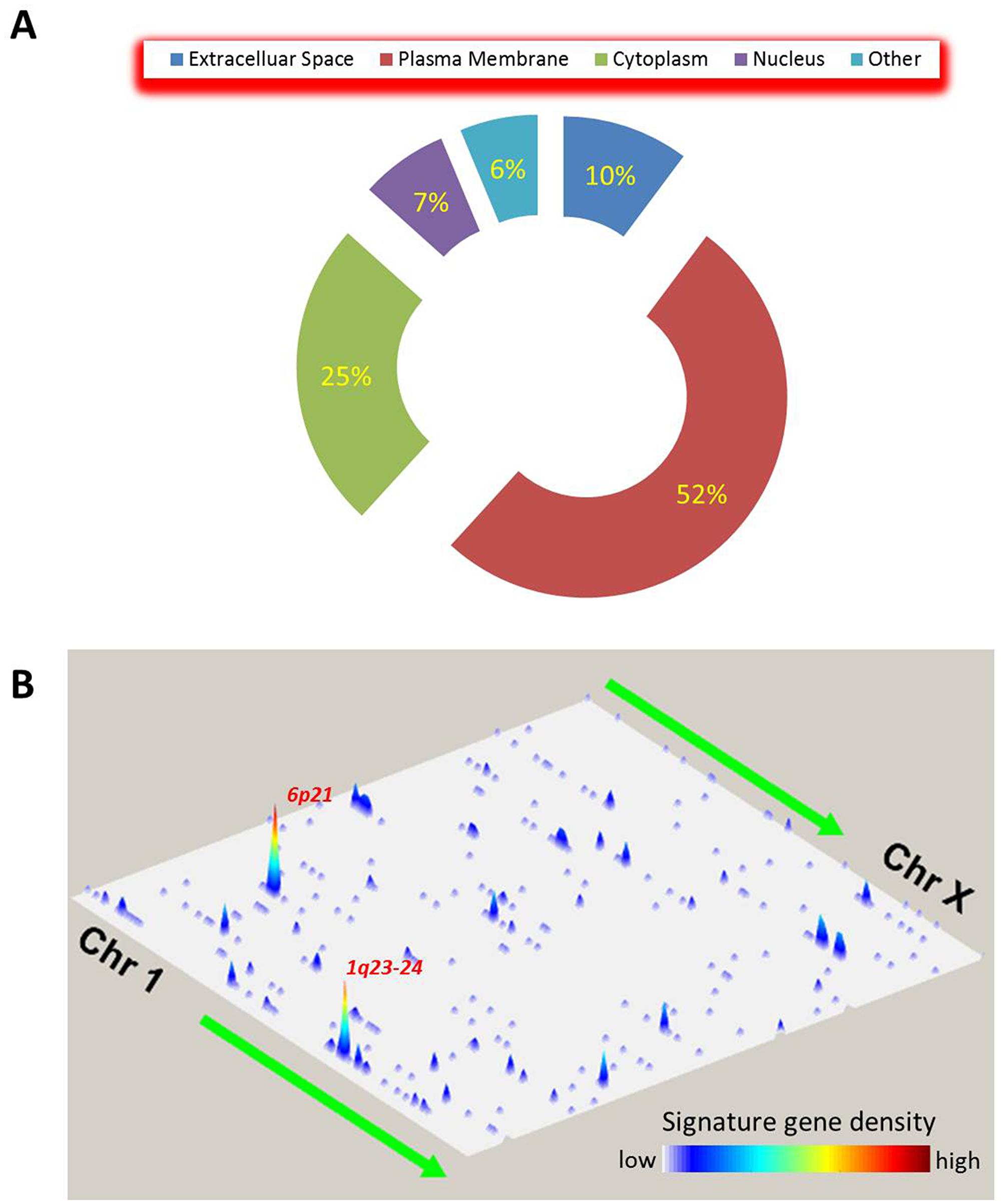 Spatial characteristics of the global immune gene signature.