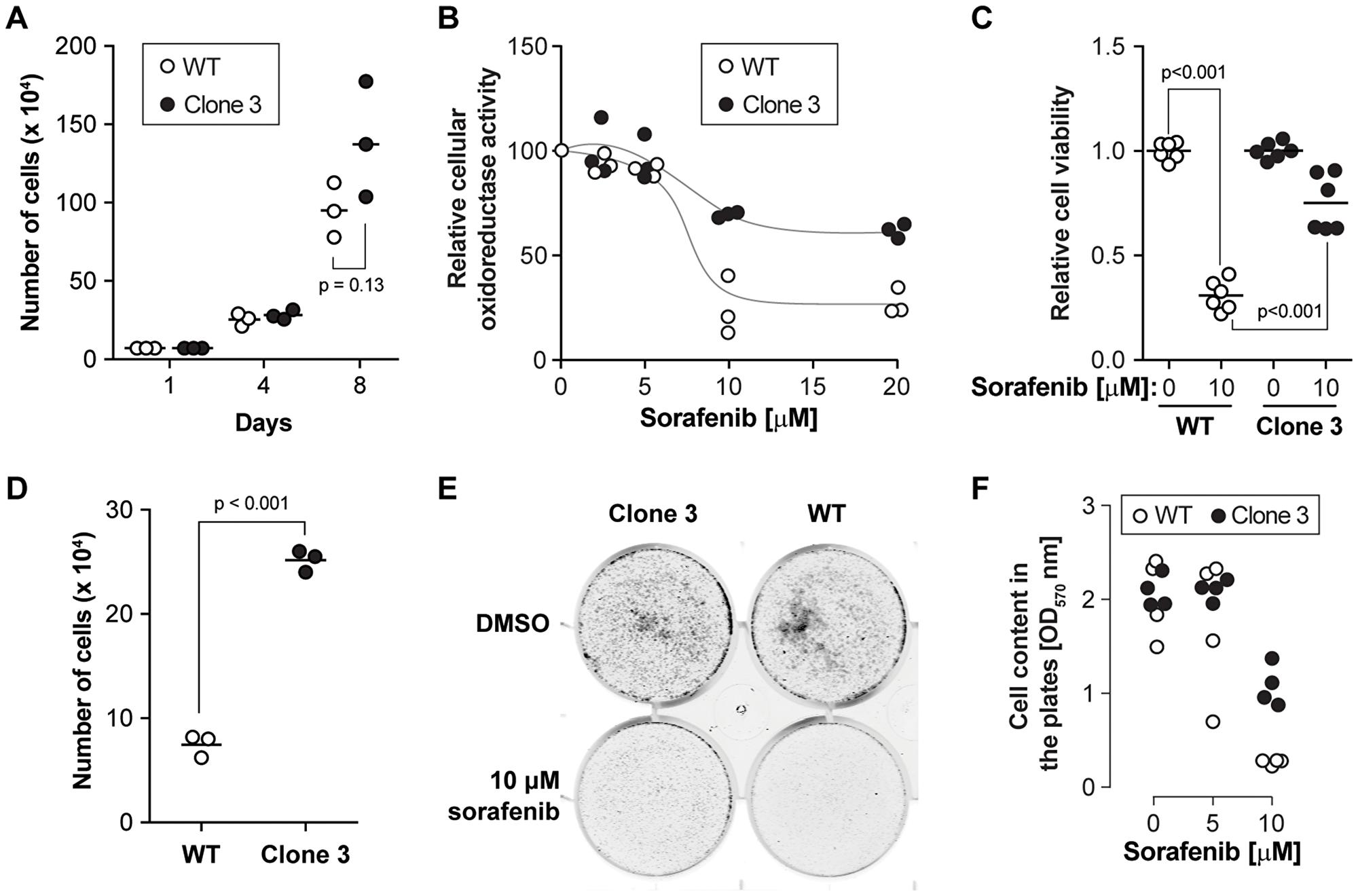 KEAP1 disruption decreases the sensitivity to sorafenib.