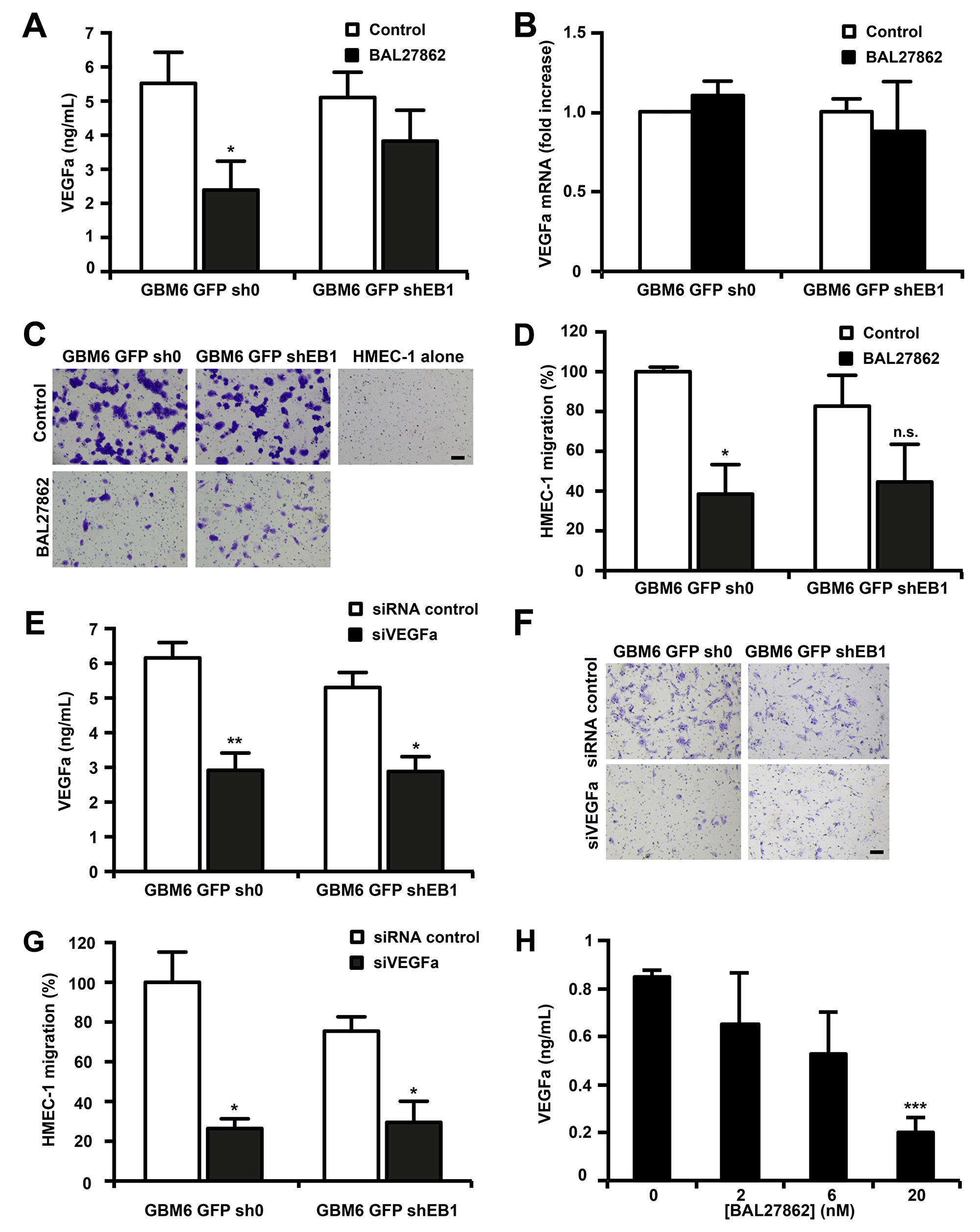 BAL27862 inhibits VEGF secretion by GBM6 cells and GBM6-induced migration of endothelial cells.