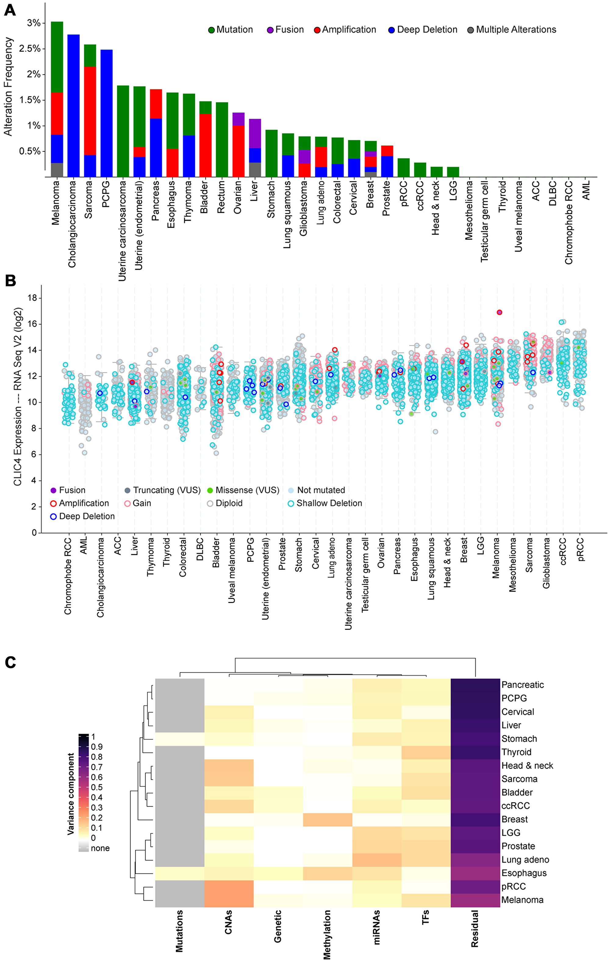 Screening for putative drivers of CLIC4 expression variation in human cancers.