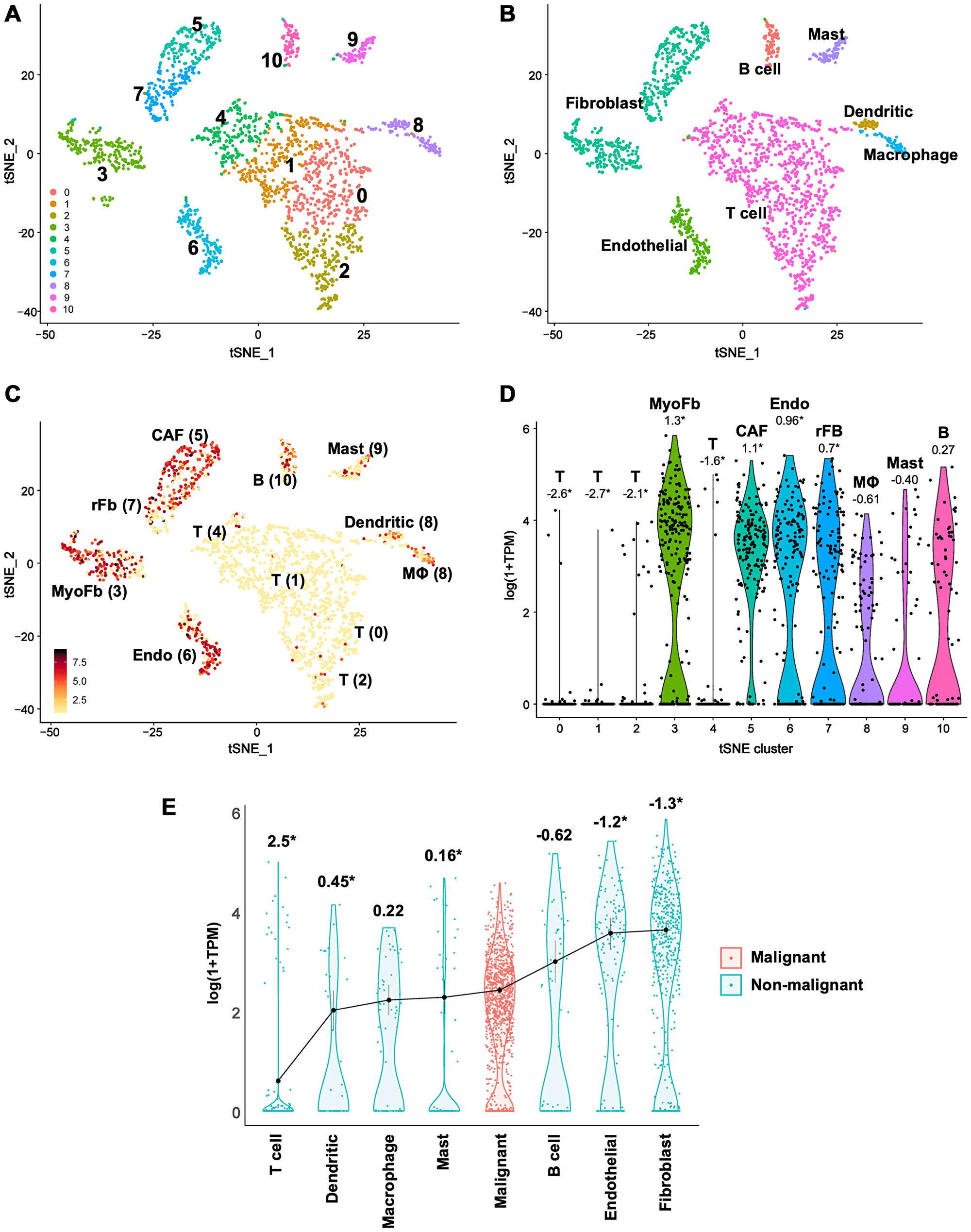 Single-cell RNA-seq data reveal lower CLIC4 expression in malignant tumor cells than in stromal fibroblasts in HNSCC.