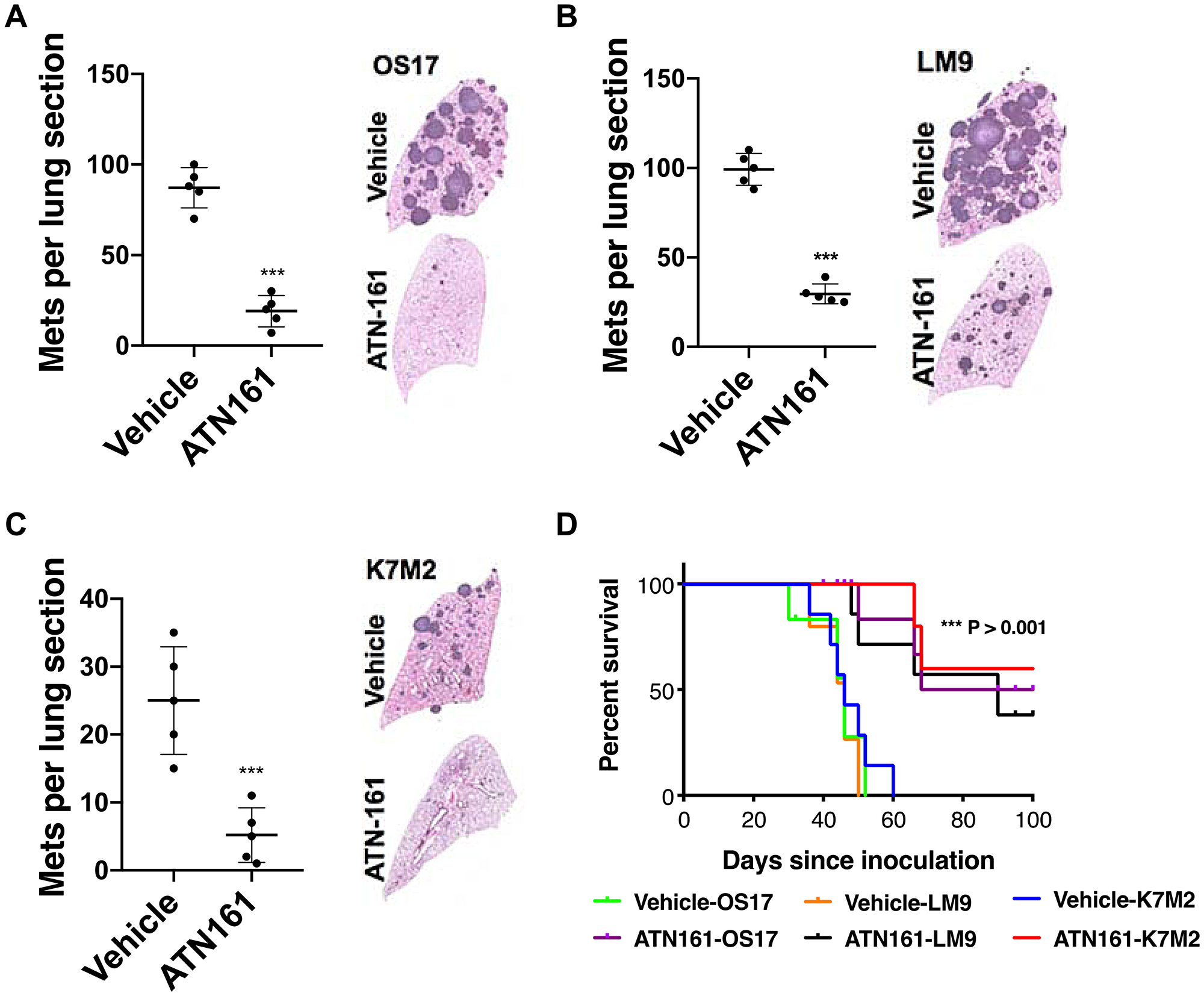 ATN-161 treatment significantly lower metastatic burden and increased overall survival.