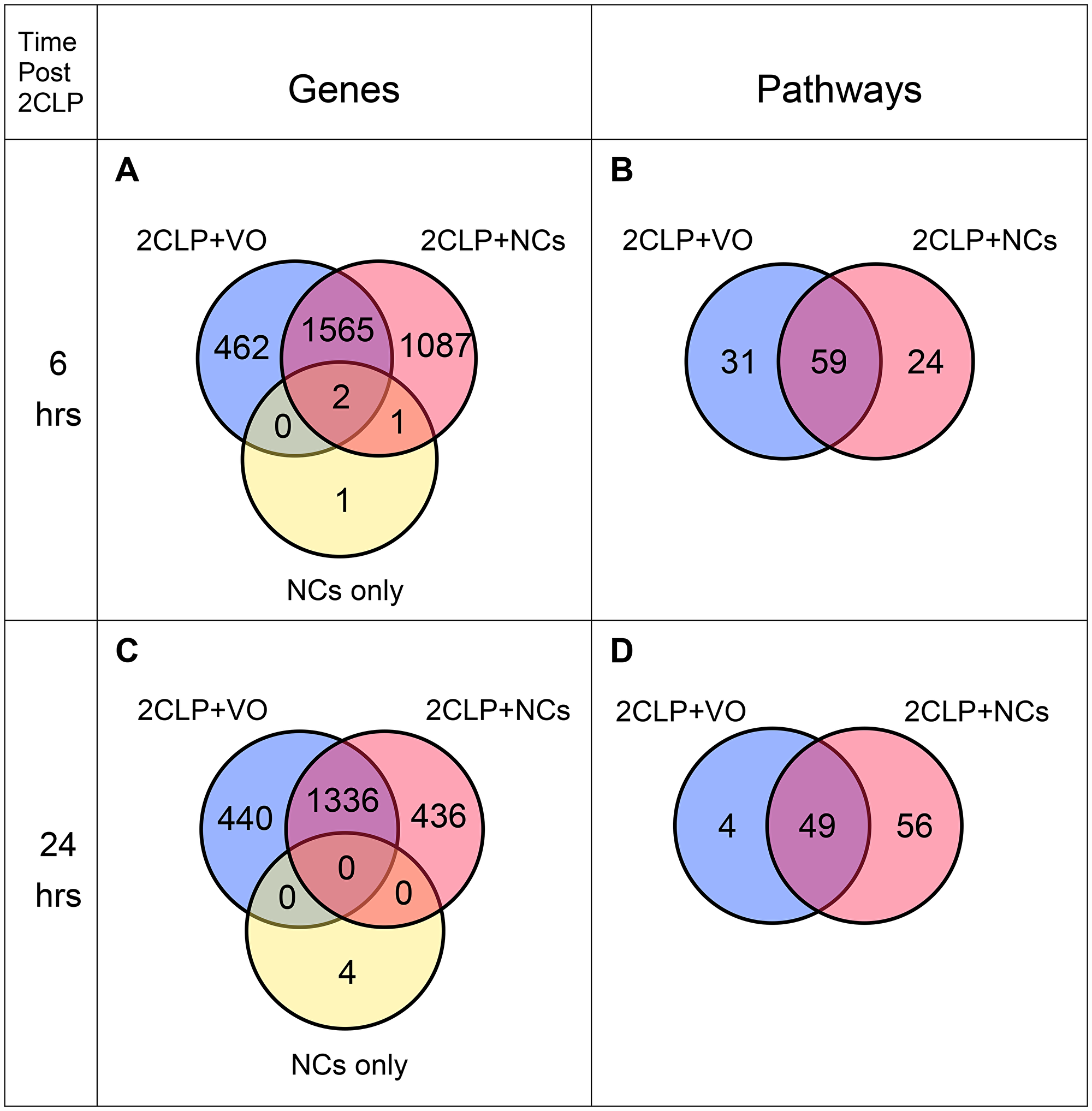 Venn diagrams of expressed genes and enriched pathways.