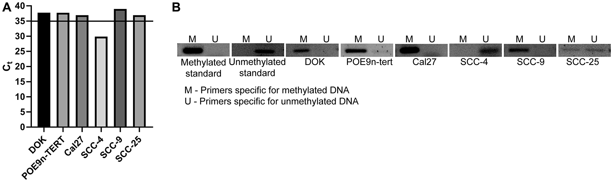 SMPD3 is methylated and its expression is undetected in a panel of oral dysplasia and cancer cell lines, except for SCC-4.