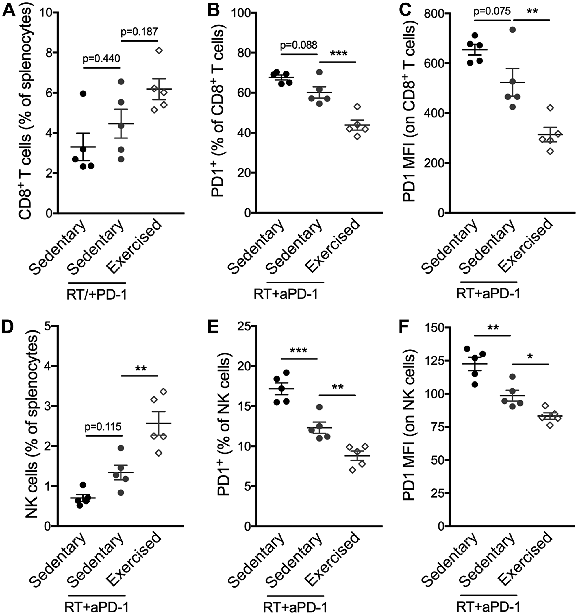 Exercise training following RT/aPD-1 therapy promotes splenic infiltration and reduced PD-1 expression of CD8+ T cells and NK cells.