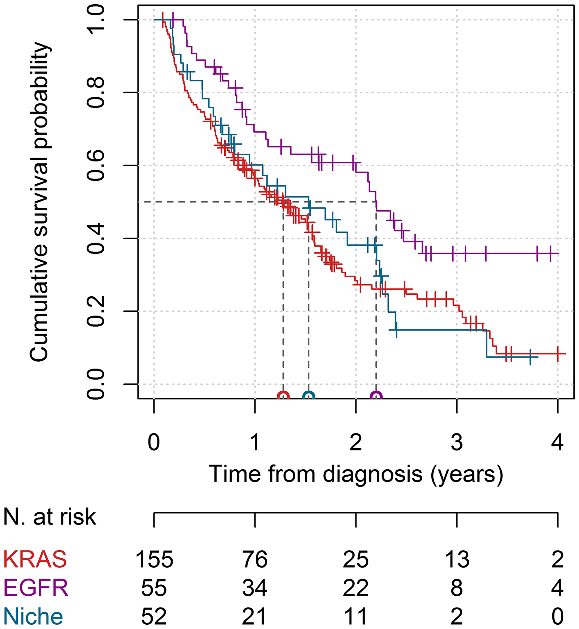 Survival curves in the KRAS, EGFR, and niche mutations cohorts.