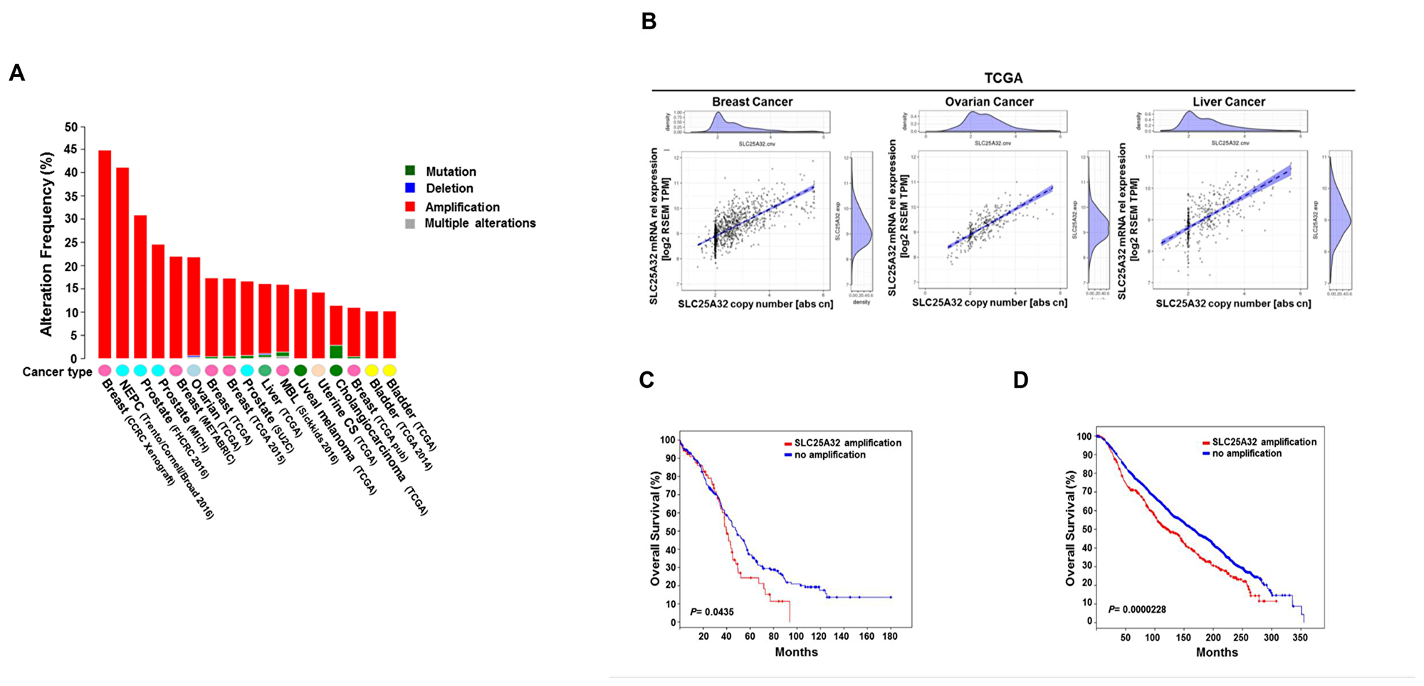 Genetic alterations of SLC25A32 reduce survival of cancer patients.