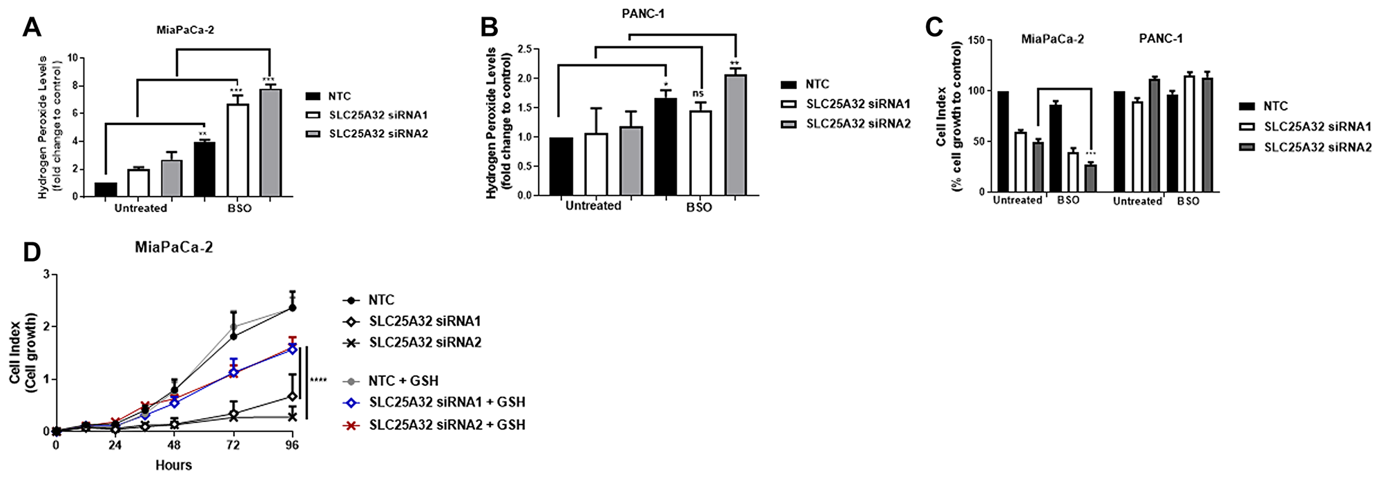 ROS-inducer BSO further sensitizes MiaPaCa-2 cells to SLC25A32 inhibition.