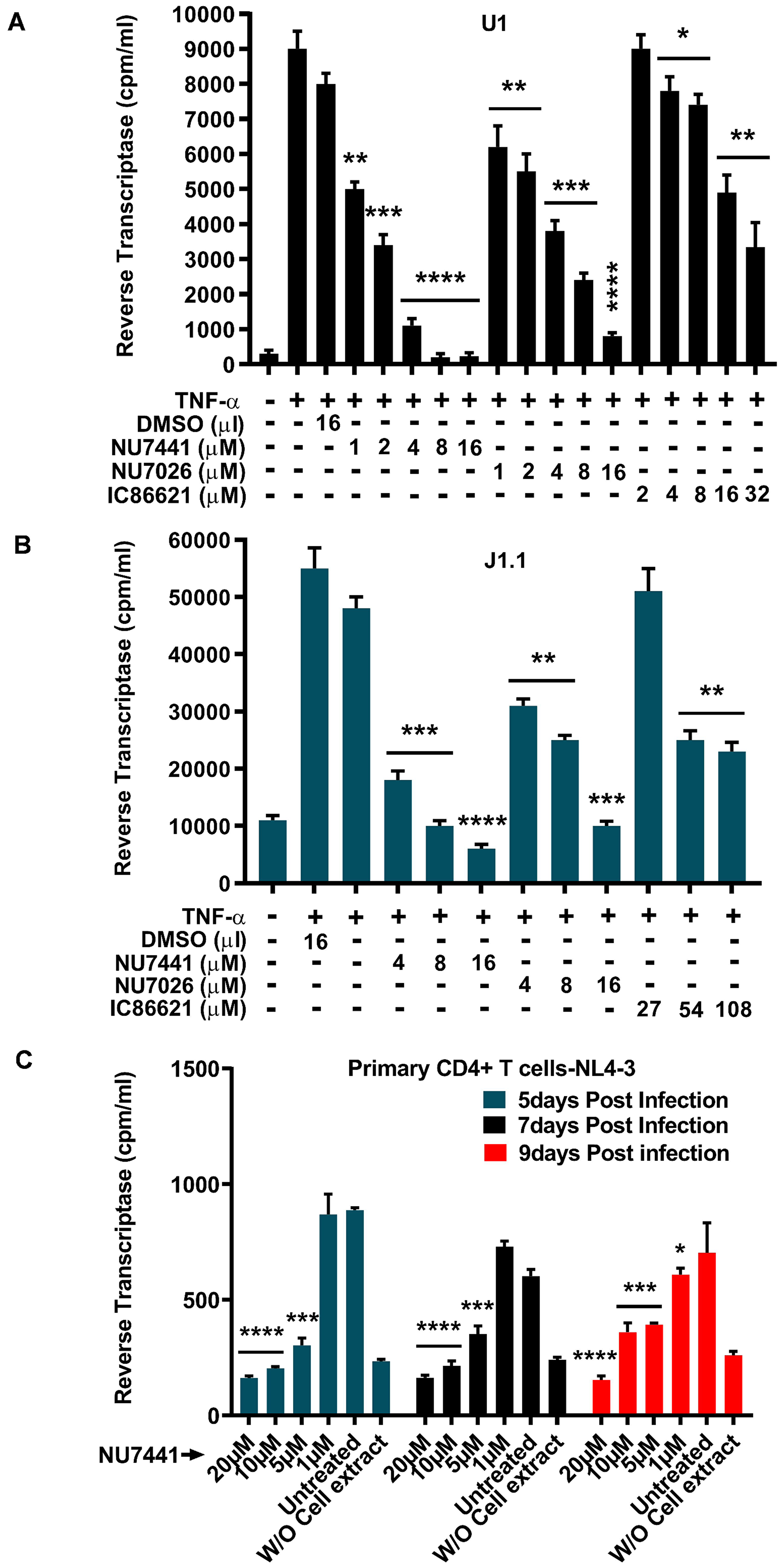 DNA-PK inhibitors drastically impair latent proviral reactivation and HIV replication.