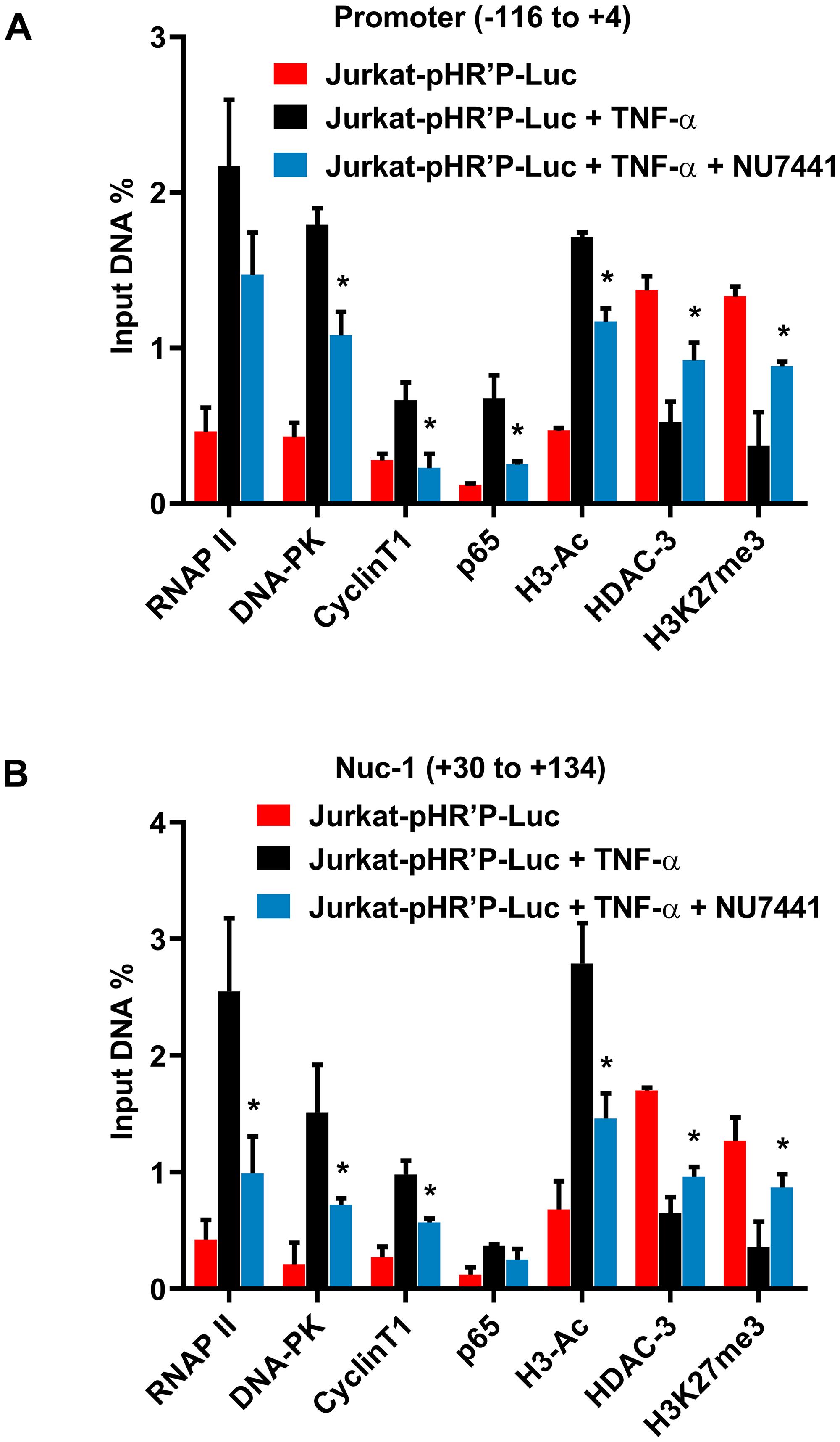 DNA-PK facilitates both the recruitment of transcription factors and establishment of euchromatin structures at HIV LTR.