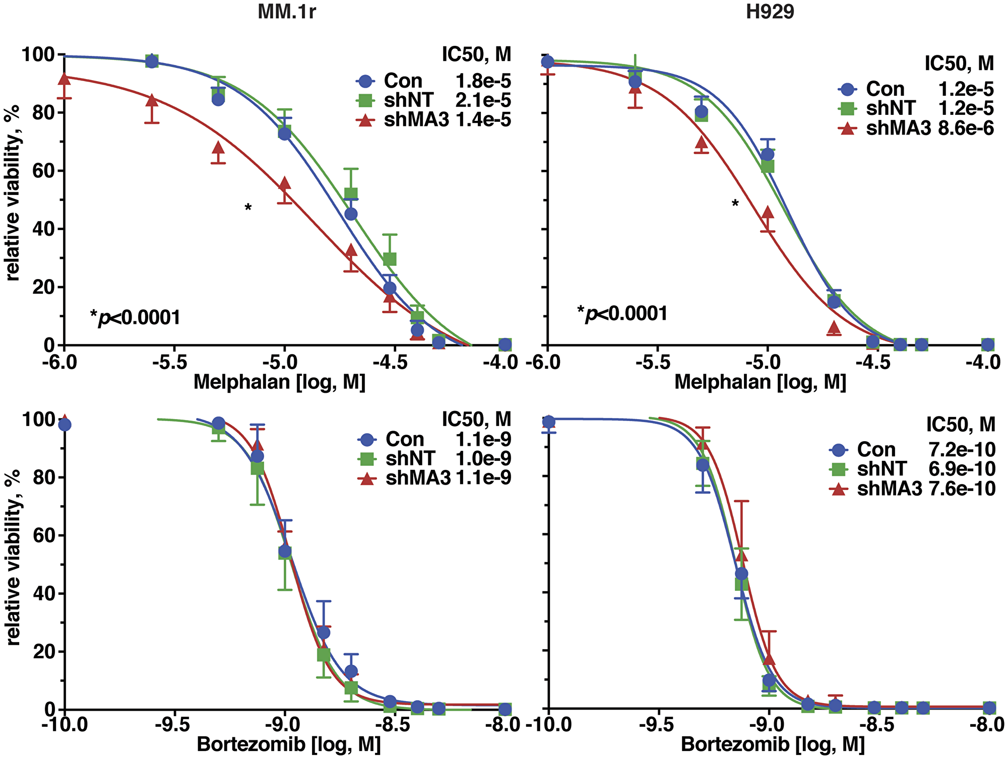 Silencing of MAGE-A in HMCL increased sensitivity to melphalan-induced apoptosis.
