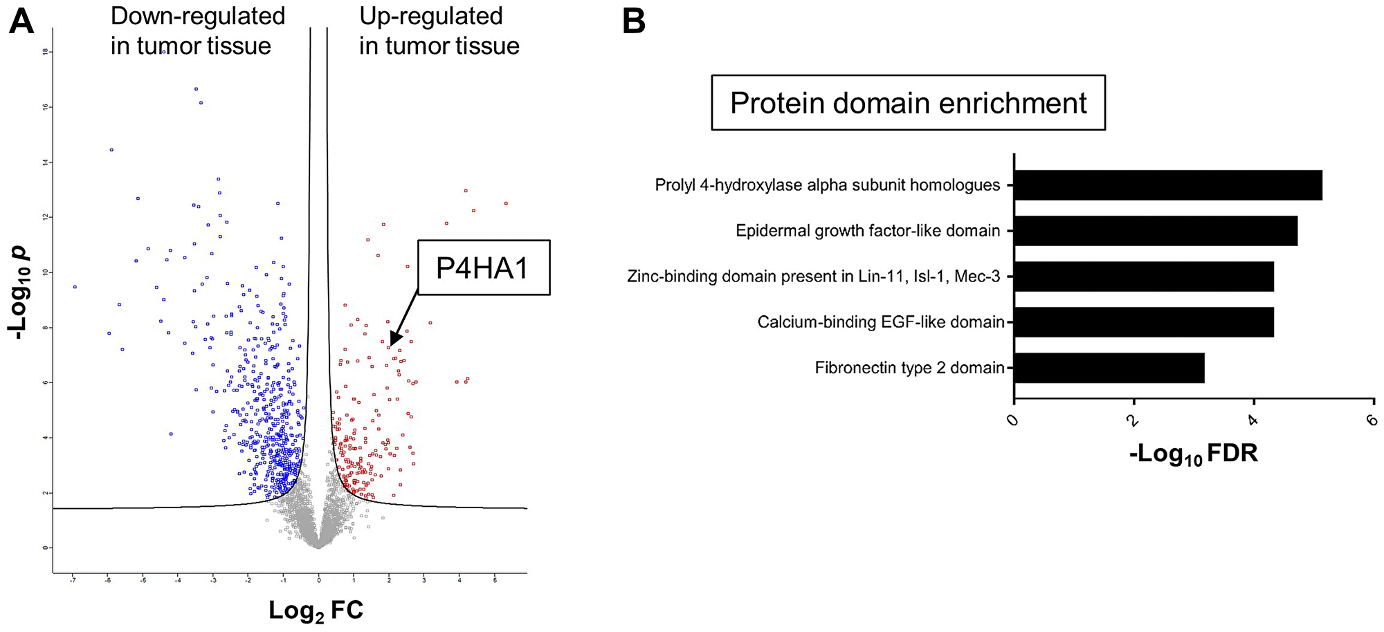 Mass spectrometric proteomics of CRC and global protein domain enrichment analysis.