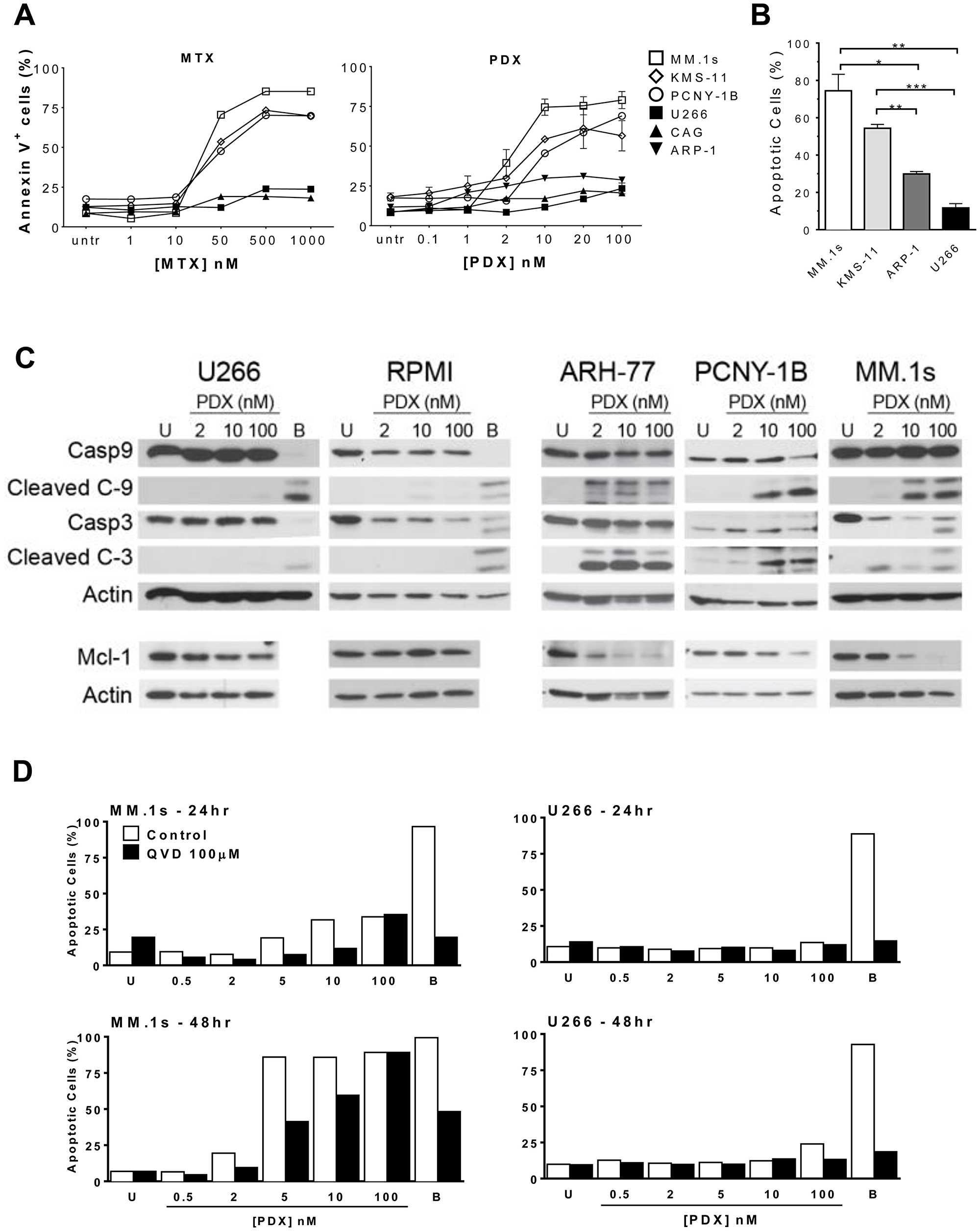 Antifolates induce apoptosis in a dose-dependent manner in sensitive HMCLs.