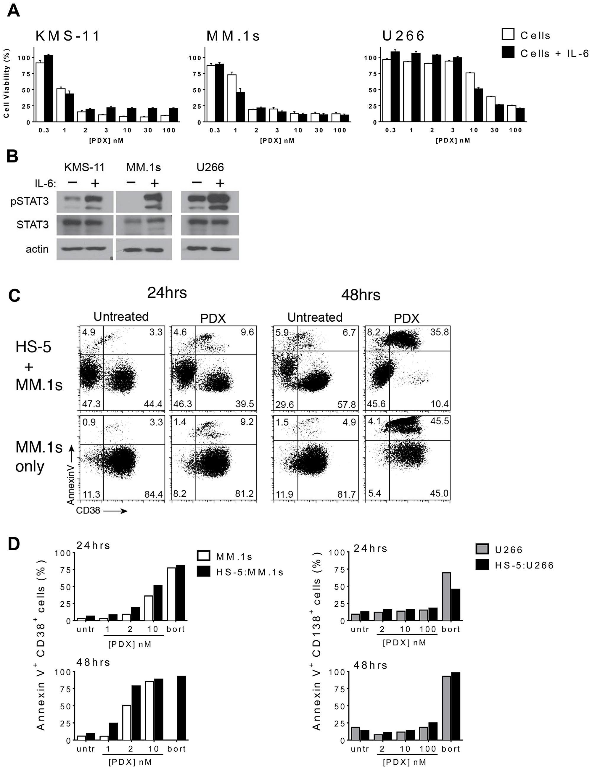 HMCLs retain sensitivity to PDX in the presence of microenvironment prosurvival factors.