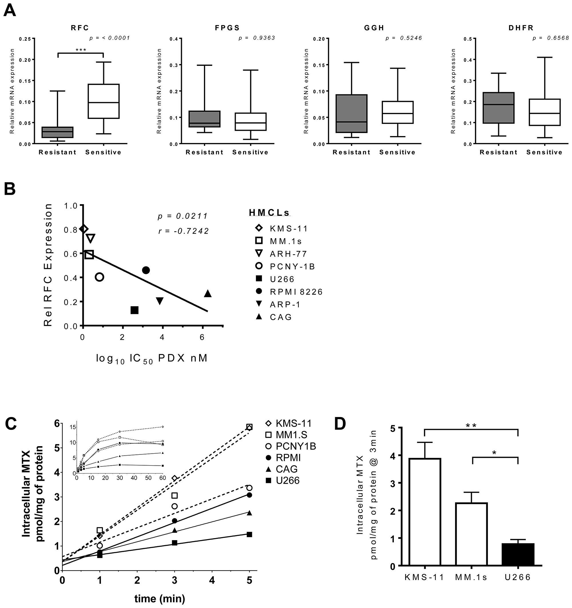 RFC expression and function correlate with PDX-sensitivity in HMCLs.
