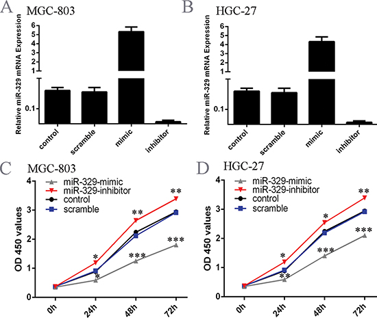 Exogenetic overexpression of miR-329 suppressed GC cell growth.