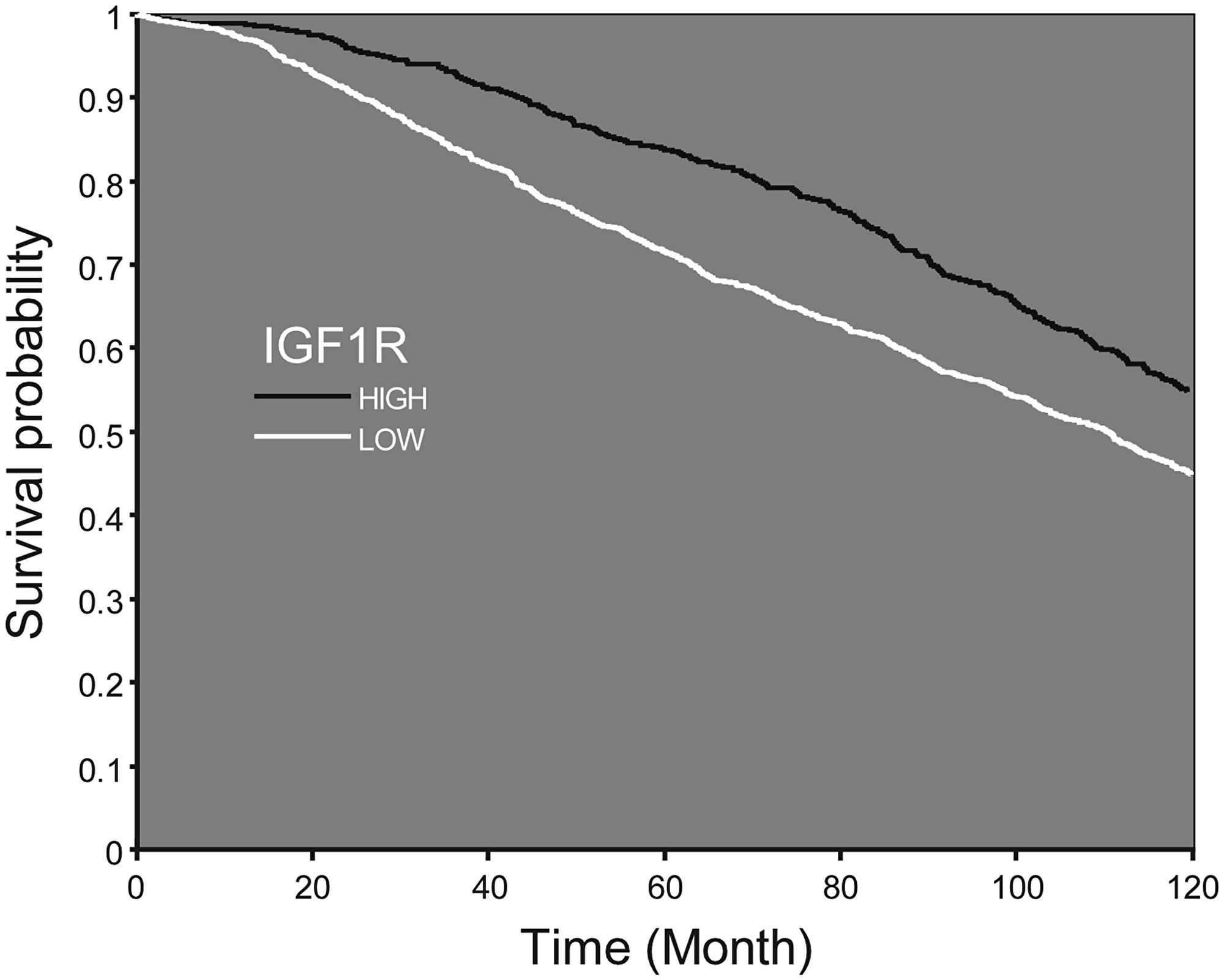 Survival probability according to IGF1R mRNA expression.