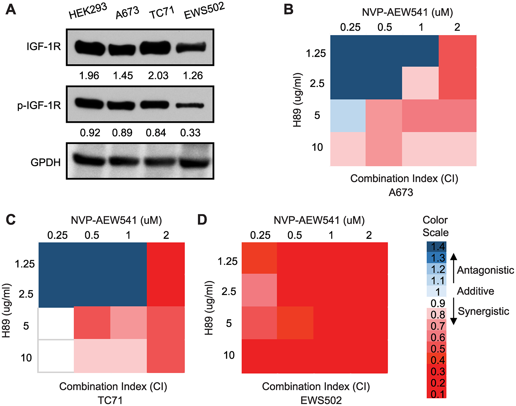 Inhibition of PPP1R1A and IGF-1R pathways synergizes in decreasing ES cell viability.