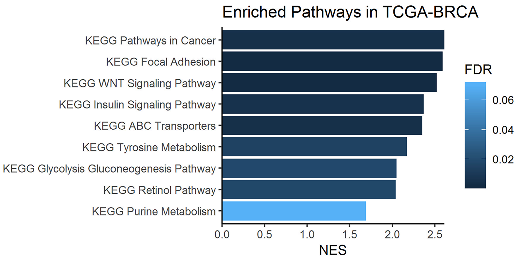 Enriched one-carbon related pathways in breast cancer samples from the KEGG database.
