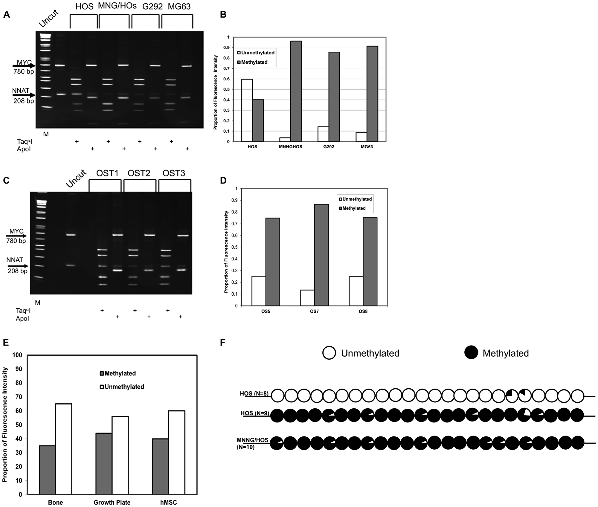 COBRA analysis demonstrates NNAT hypermethylation in osteosarcoma cell lines and primary tumor samples but not in normal bone or bone progenitors.