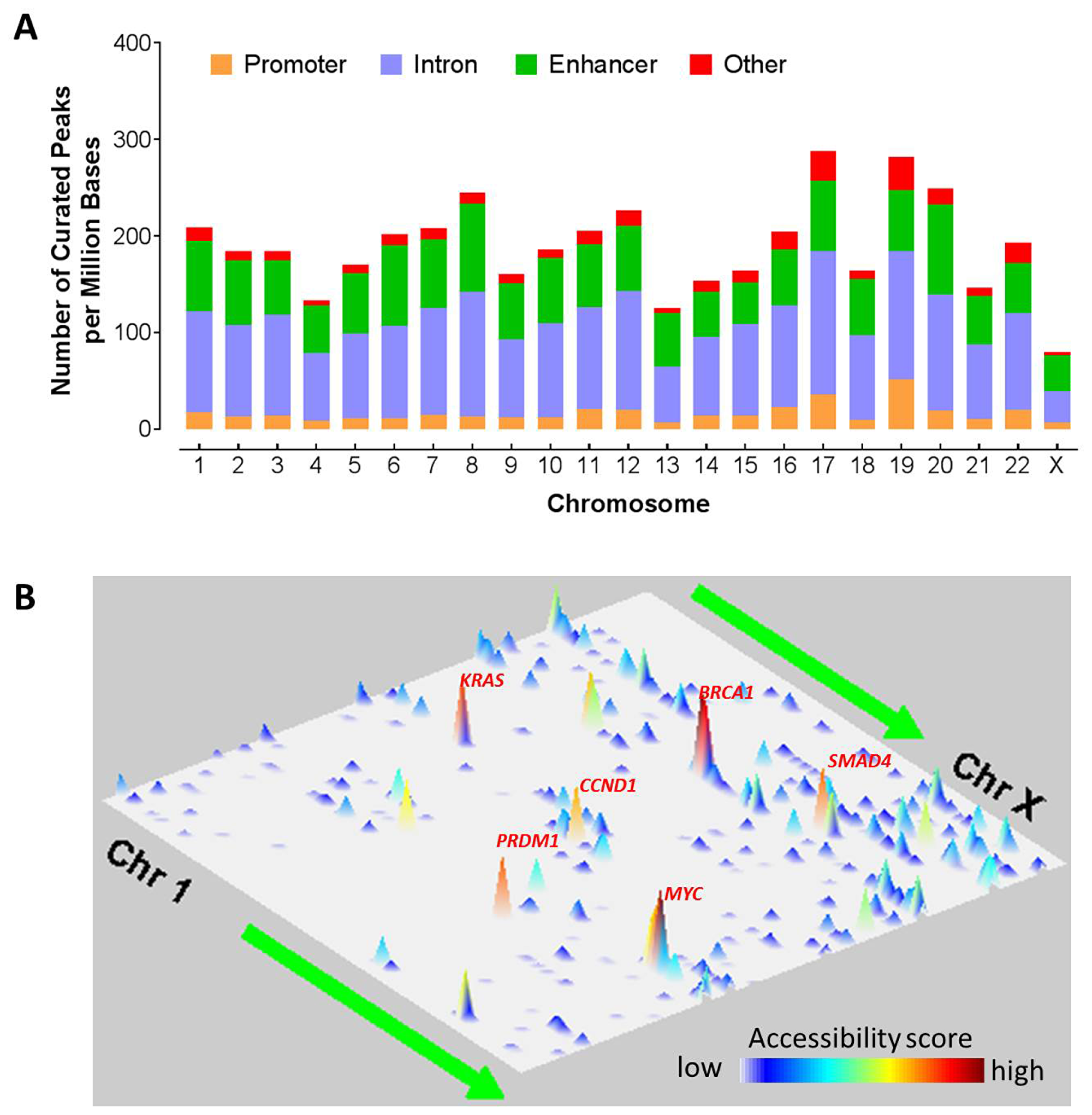 Chromosomal landscape of chromatic accessibility in human cancers.