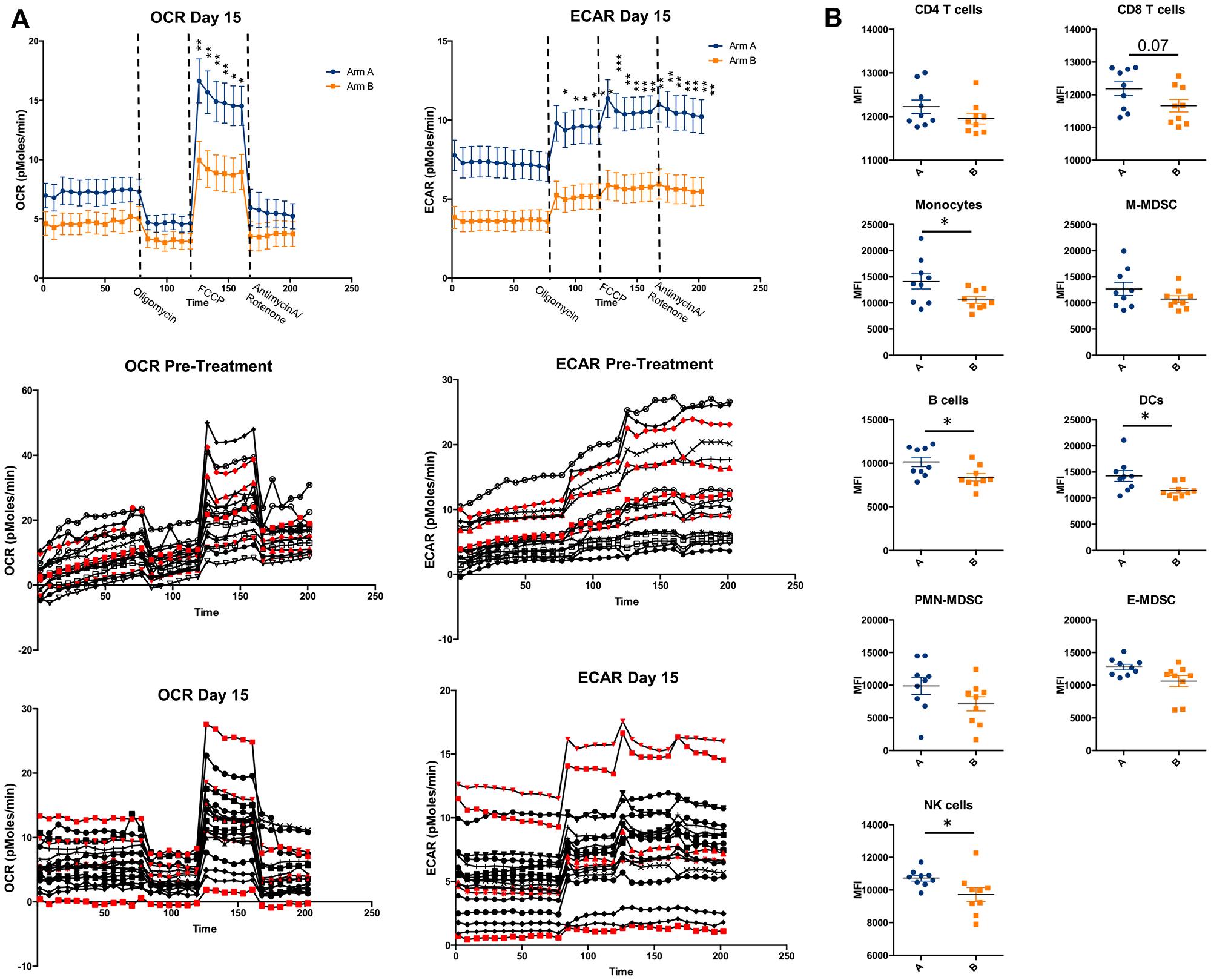 Metabolic analysis of PBMCs.