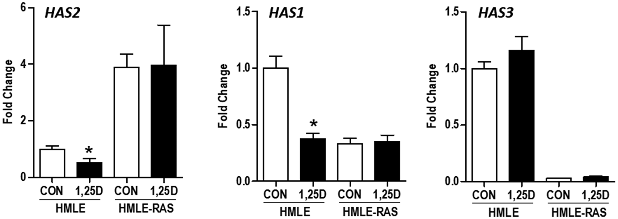 Effect of H-RASV12 transformation on HAS gene expression in immortalized human mammary epithelial cells.