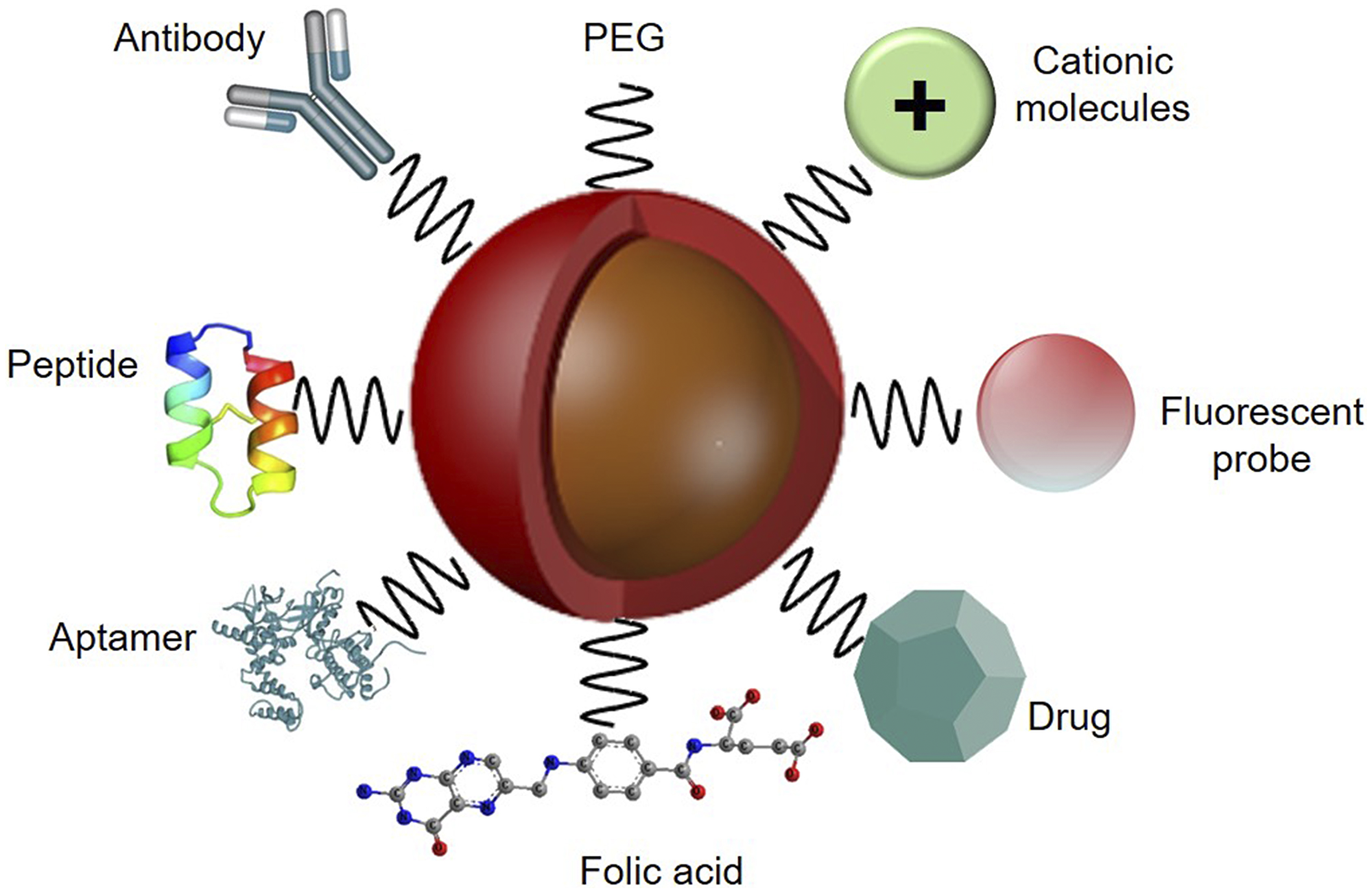 Functionalized nanoparticle platform with various targeting ligand agents for active PS delivery in PDT applications, with PEG to improve biocompatibility and an imaging fluorescent probe to monitor PS specific tumour cellular uptake.