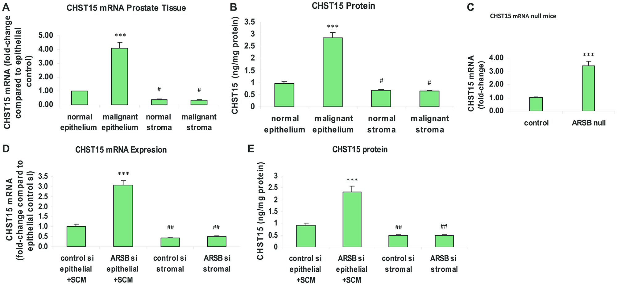 Chondroitin sulfotransferase (CHST) 15 (chondroitin 4-sulfate 6-O-sulfotransferase) is increased in malignant prostate epithelial tissue, in prostate tissue of ARSB-null mice, and in prostate epithelial cells when ARSB is reduced.