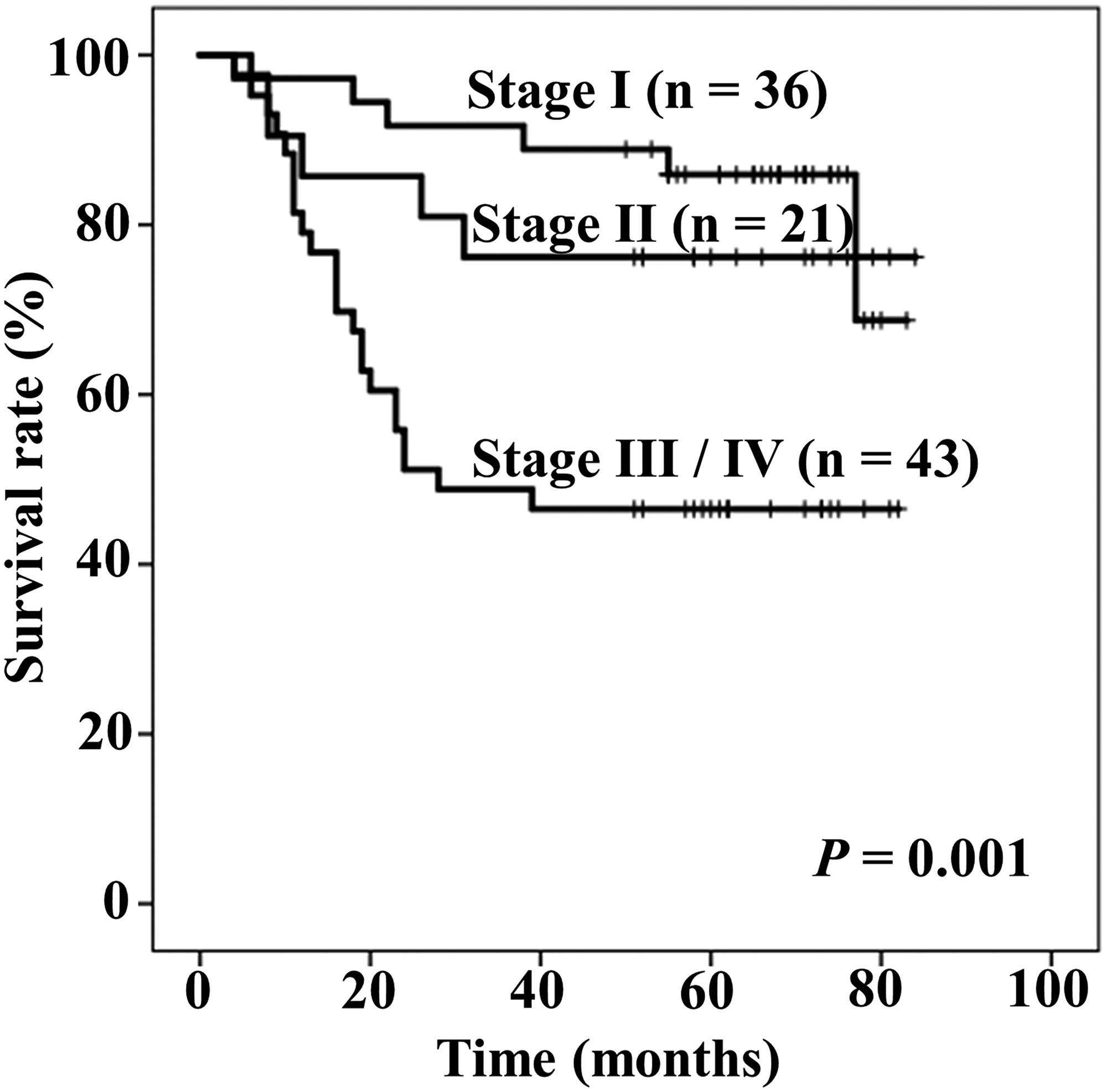 Kaplan–Meier curves of overall survival stratified by Tumor-Node-Metastasis (TNM) stage.