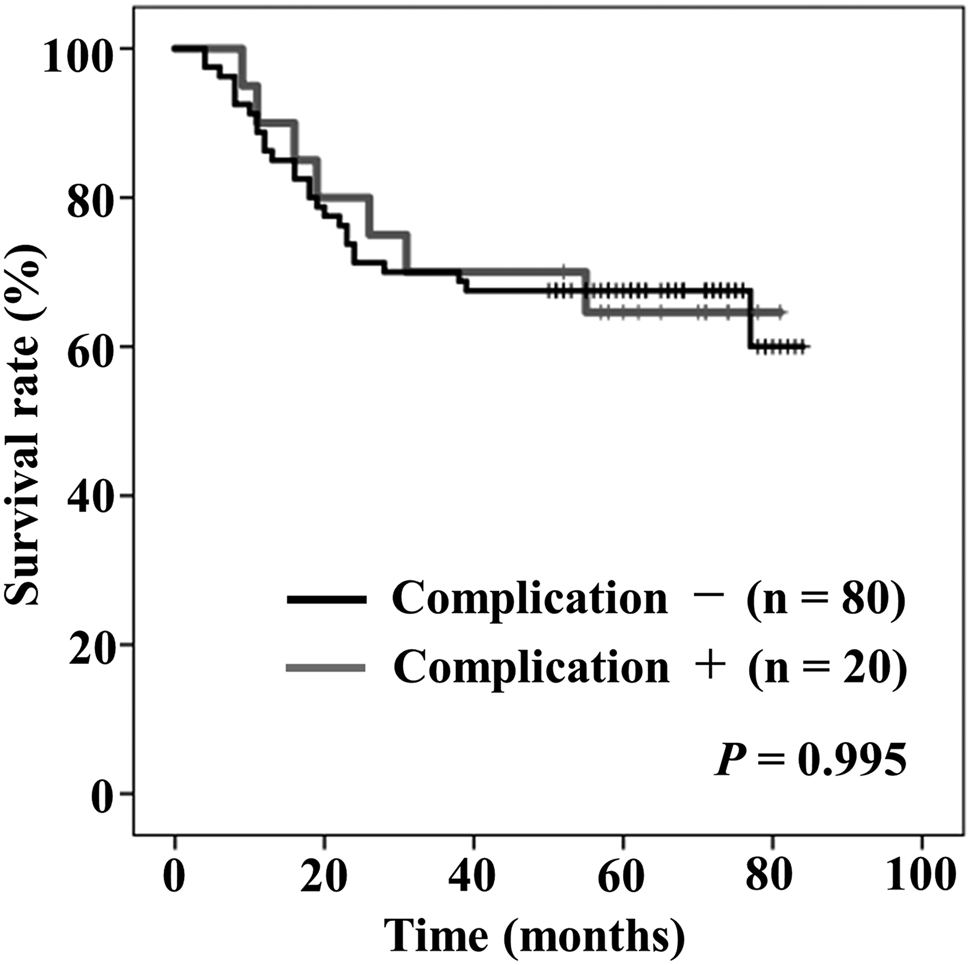 Kaplan–Meier curves of overall survival stratified by the presence (gray) or absence (black) of postoperative complication (more than Clavien-Dindo classification grade IIIa).