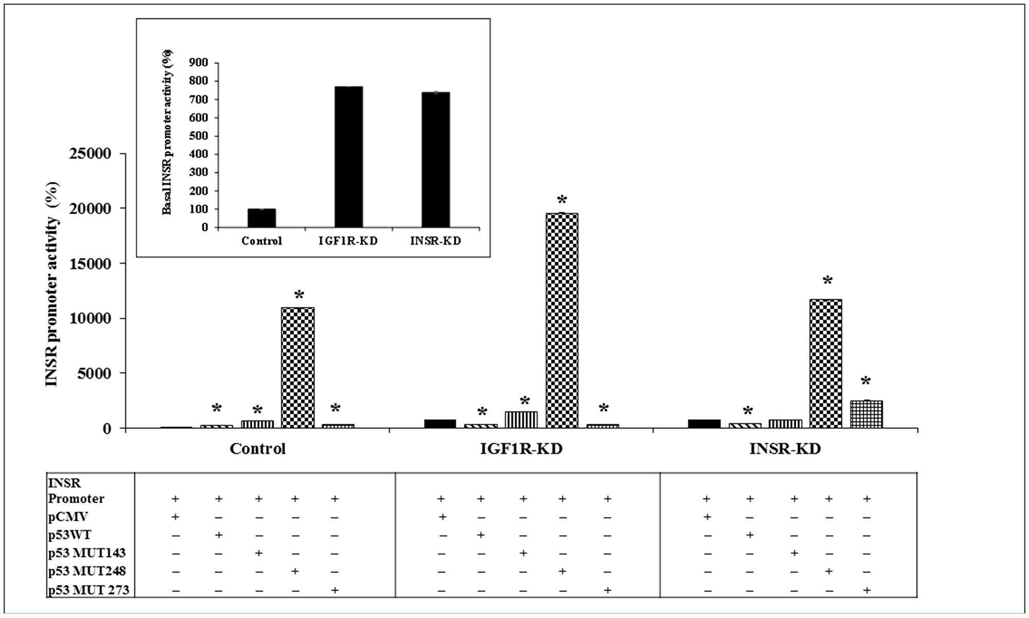 Effect of wild-type or mutant p53 on INSR promoter activity.