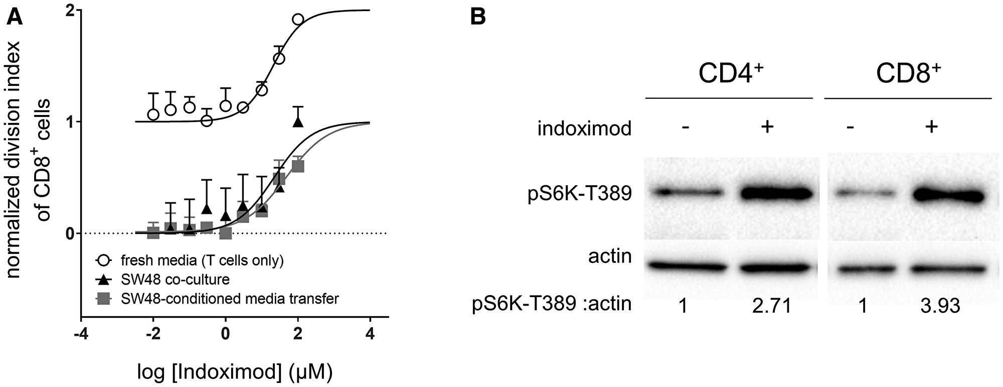 Indoximod augments CD8+ T cell proliferation in both nutrient depleted and nutrient replete conditions.