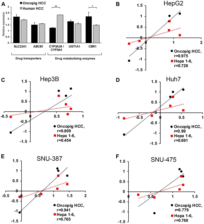 Oncopig, human, and murine HCC in vitro chemotherapeutic susceptibility.