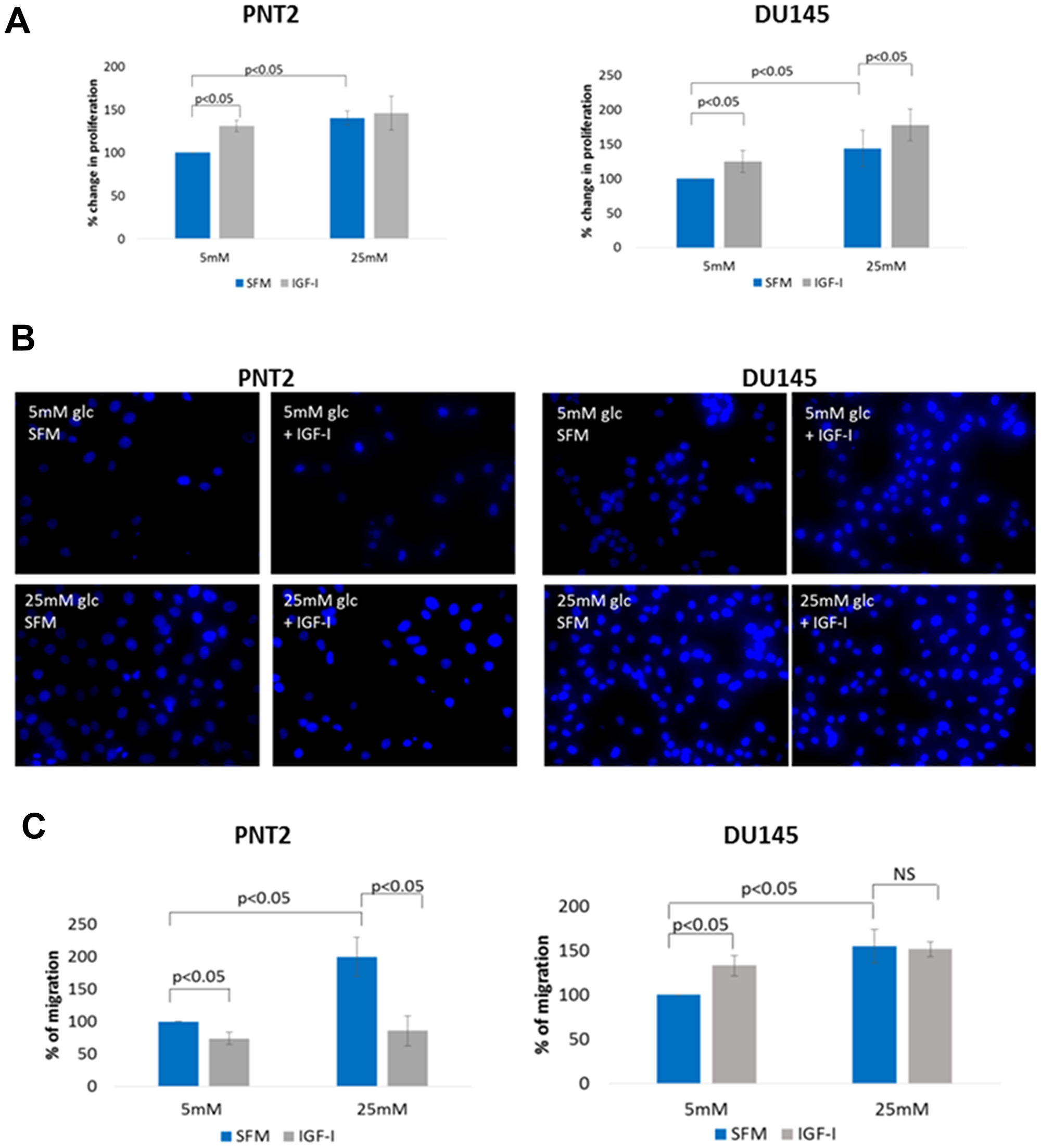The effect of IGF on cell proliferation and migration in prostate epithelial cells in altered glucose condition.
