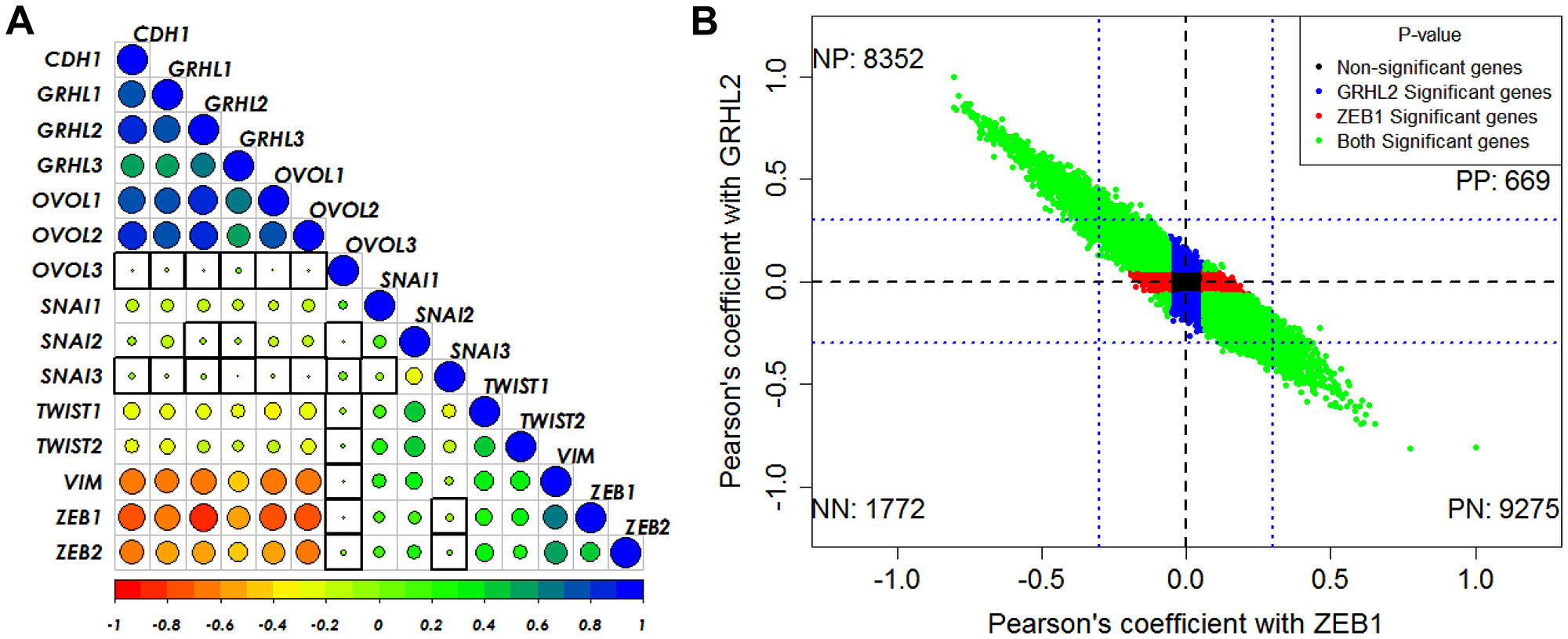 GRHL2/ZEB1 axis correlates with EMT/MET across cancer types.