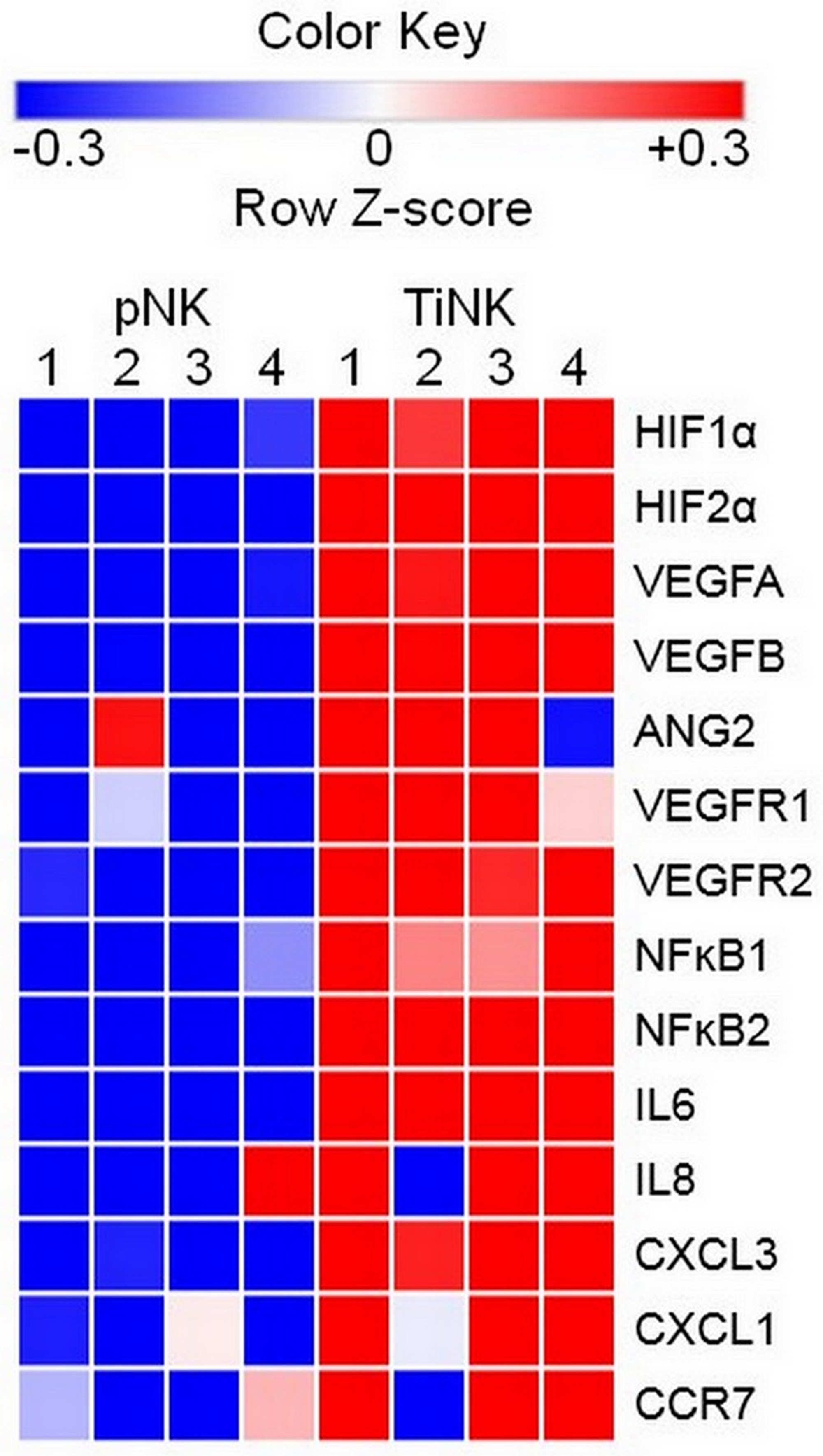 RCC TiNK cells have an altered transcriptional profiled compared to patient matched pNK cells.
