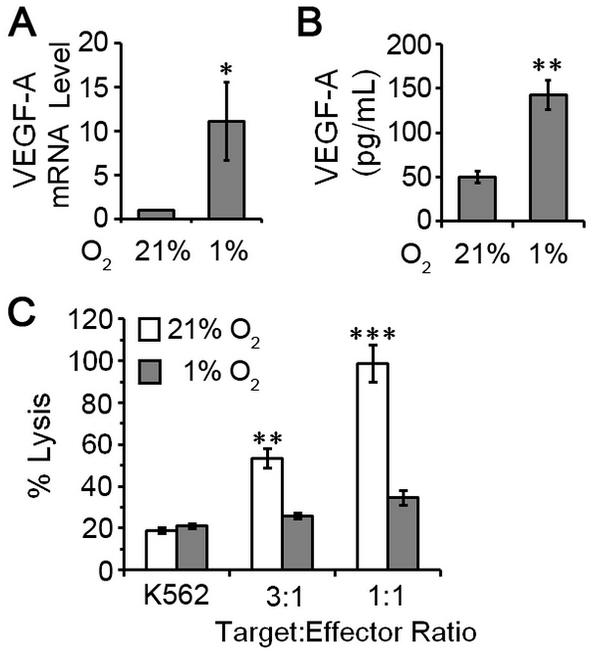 pNK cells exposed to hypoxia are poorly cytotoxic and proangiogenic.