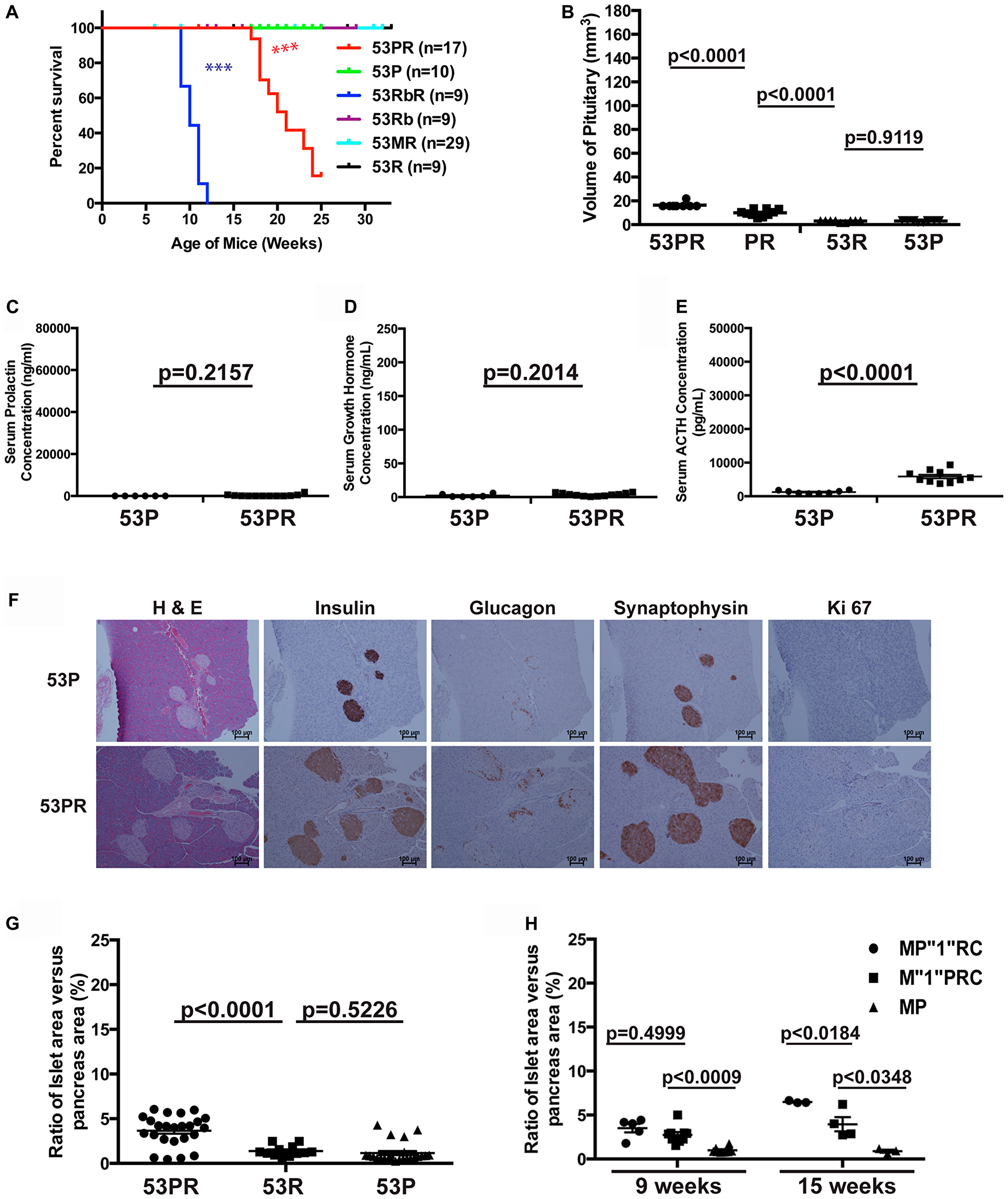 Trp53 and Pten had weak cooperative function in suppressing pituitary growth.