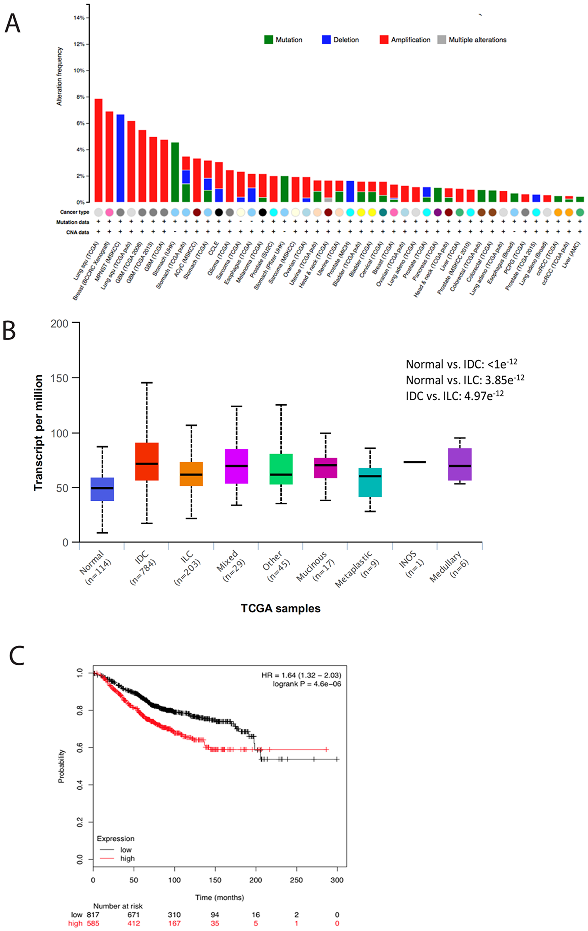TMEM165 is increased in many human cancers and correlates with reduced overall survival.