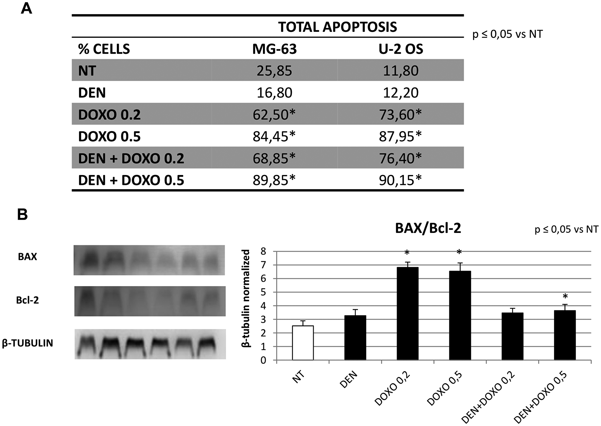 Apoptosis evaluation in OS cell lines after treatment with Den and Doxo determined by cytofluorimetric assay and by Western blot (BAX/Bcl-2 ratio).