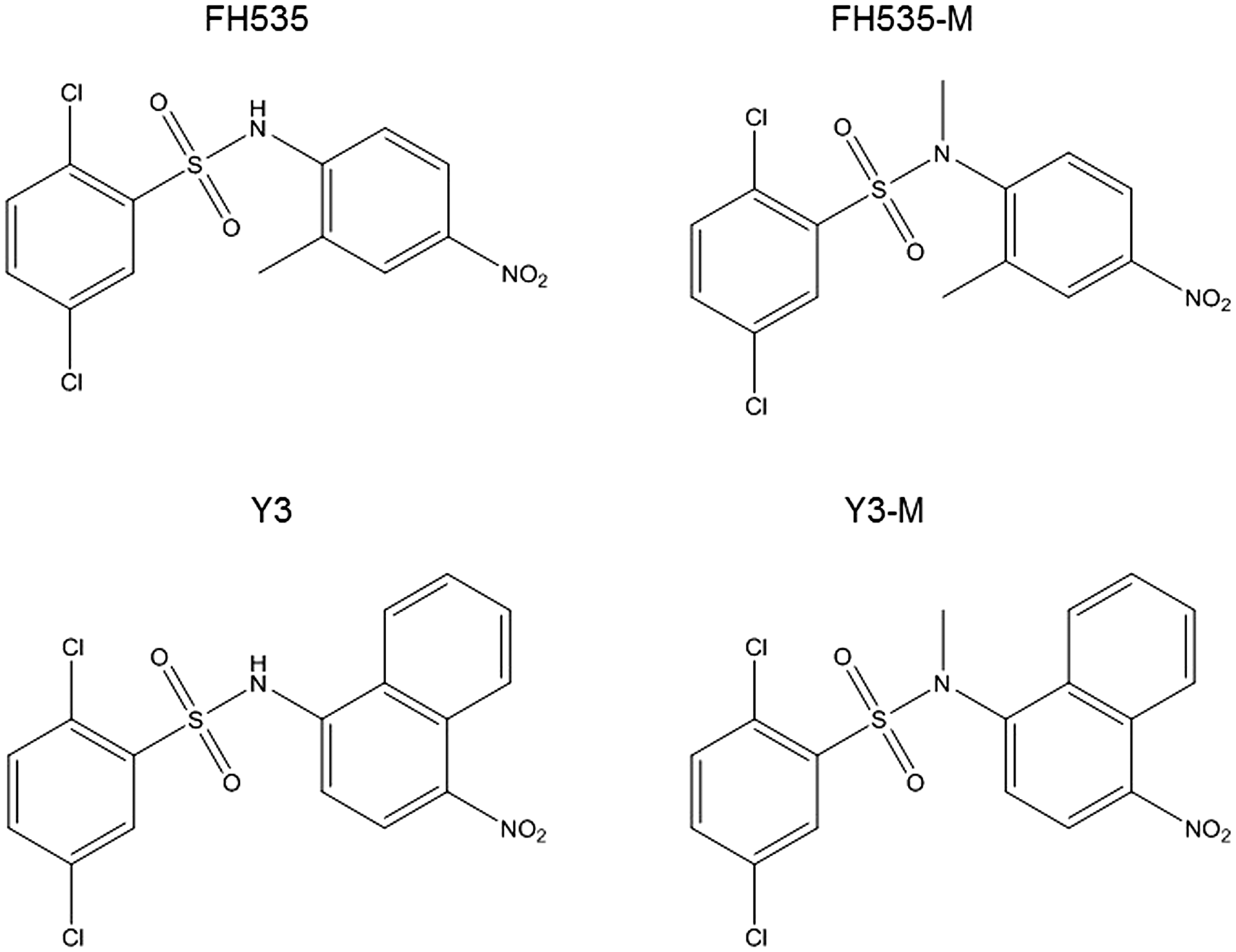 Structures of FH535 and Y3 and methylated compounds.