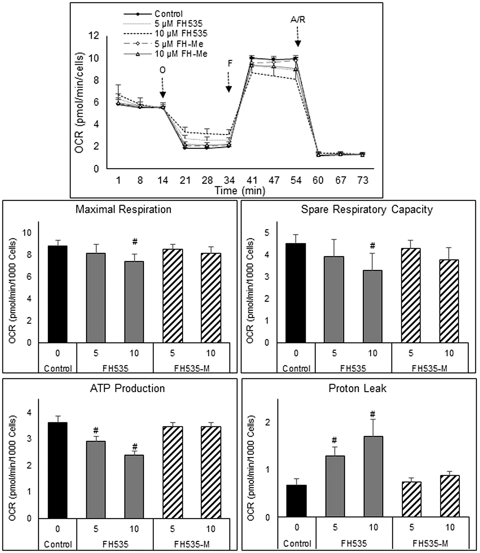Mitochondrial respiration changes induced after treatment of HCC cells for 24 h with FH535 and its methylated derivative.