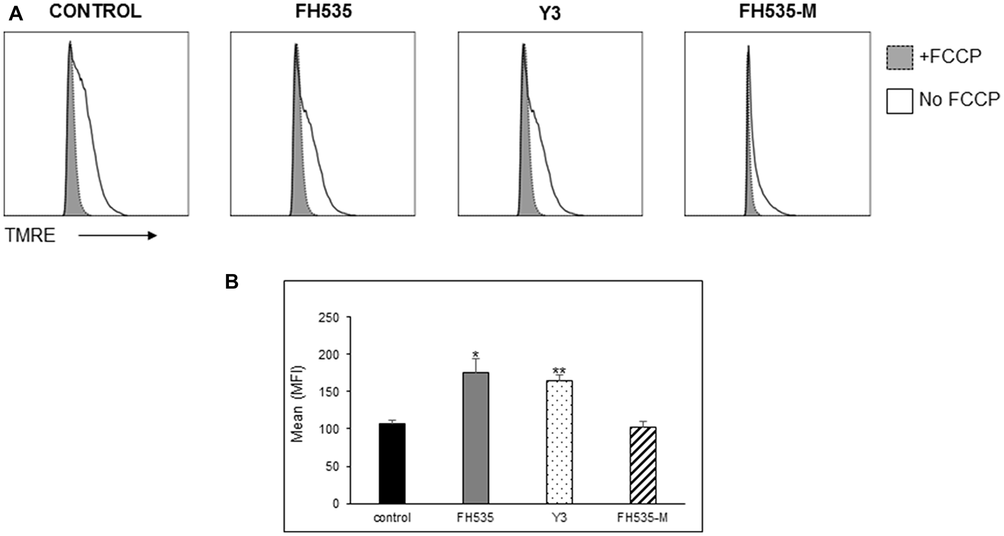 Effect of FH535 methylated compound on mitochondrial membrane potential (Δψm).