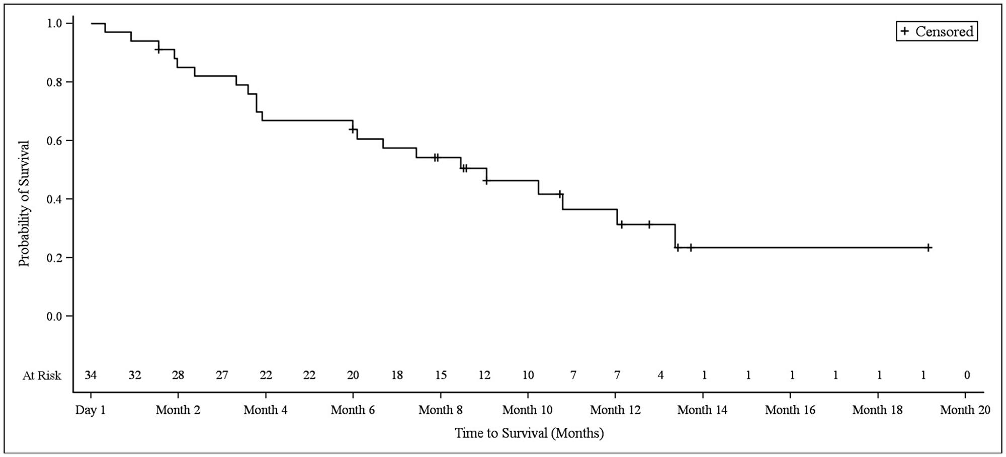 Kaplan–Meier plot of overall survival in NSCLC patients.
