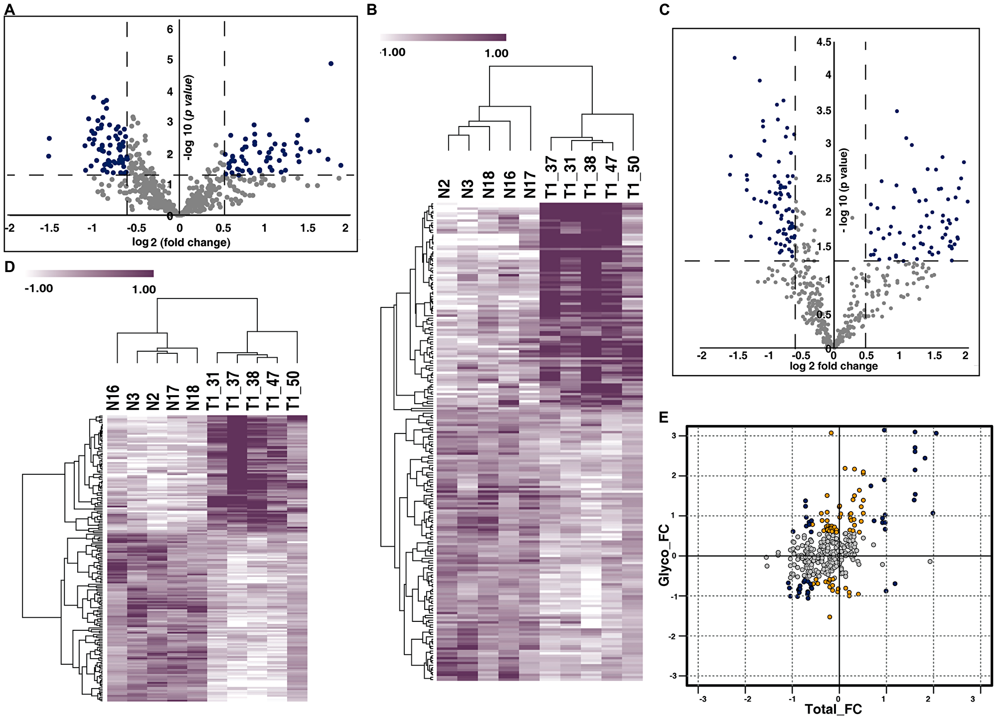 Urinary N-glycoproteome and proteome of NMIBC.