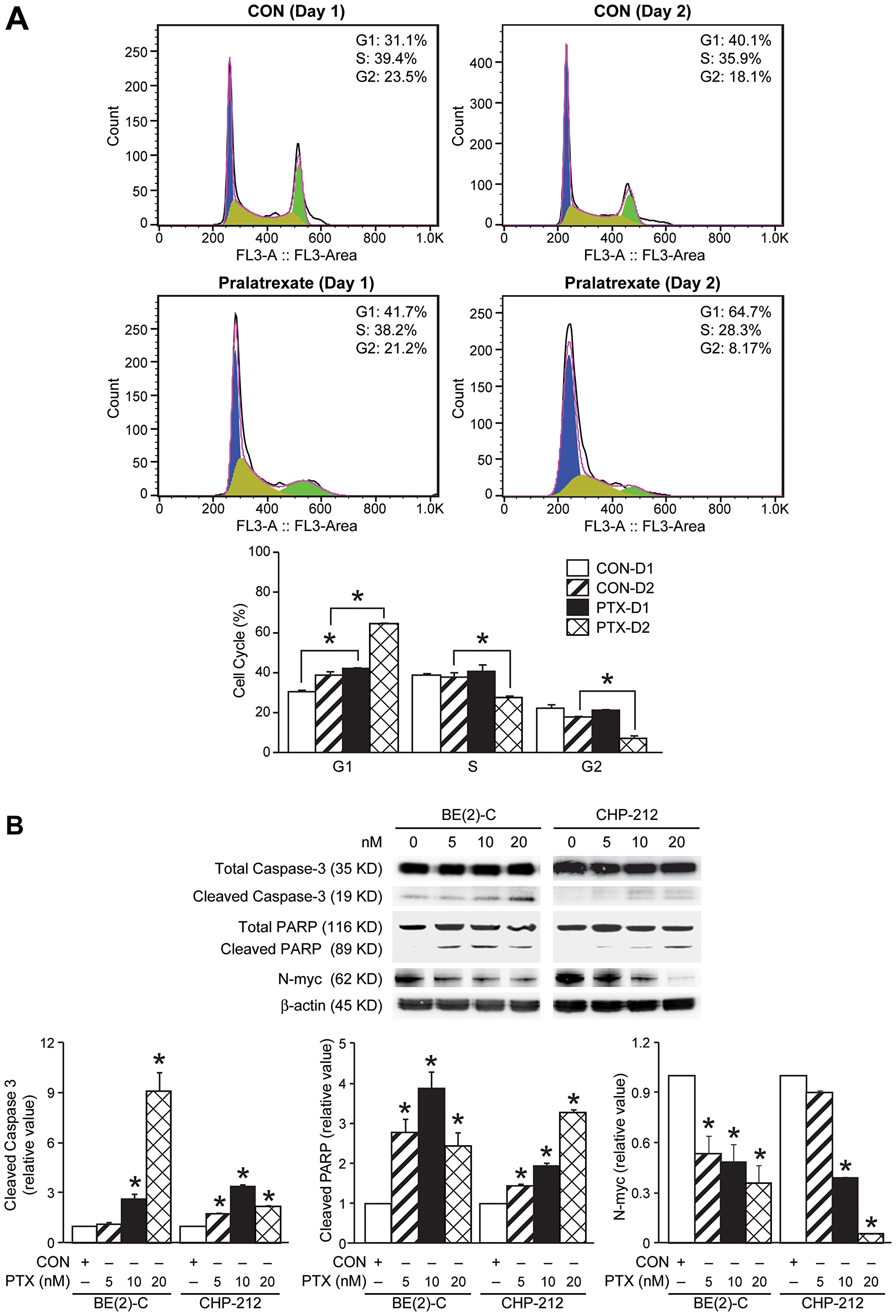 Effects of pralatrexate treatment on caspase-3, PARP, and N-myc protein expression.