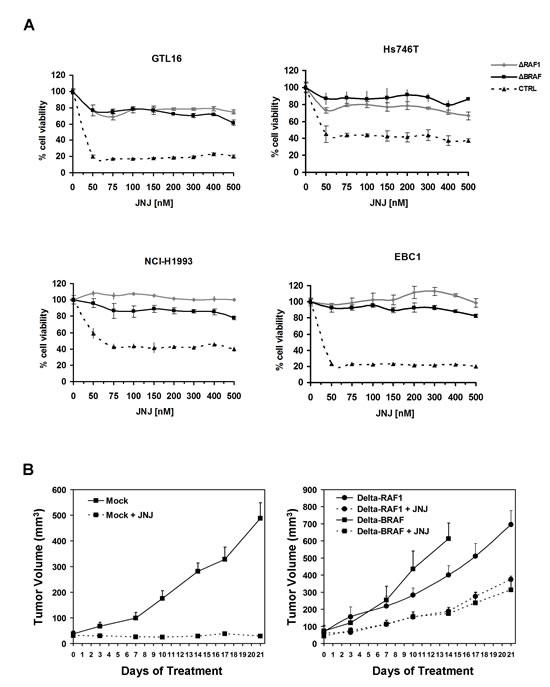 Expression of truncated RAF1 or BRAF confers resistance to MET inhibition