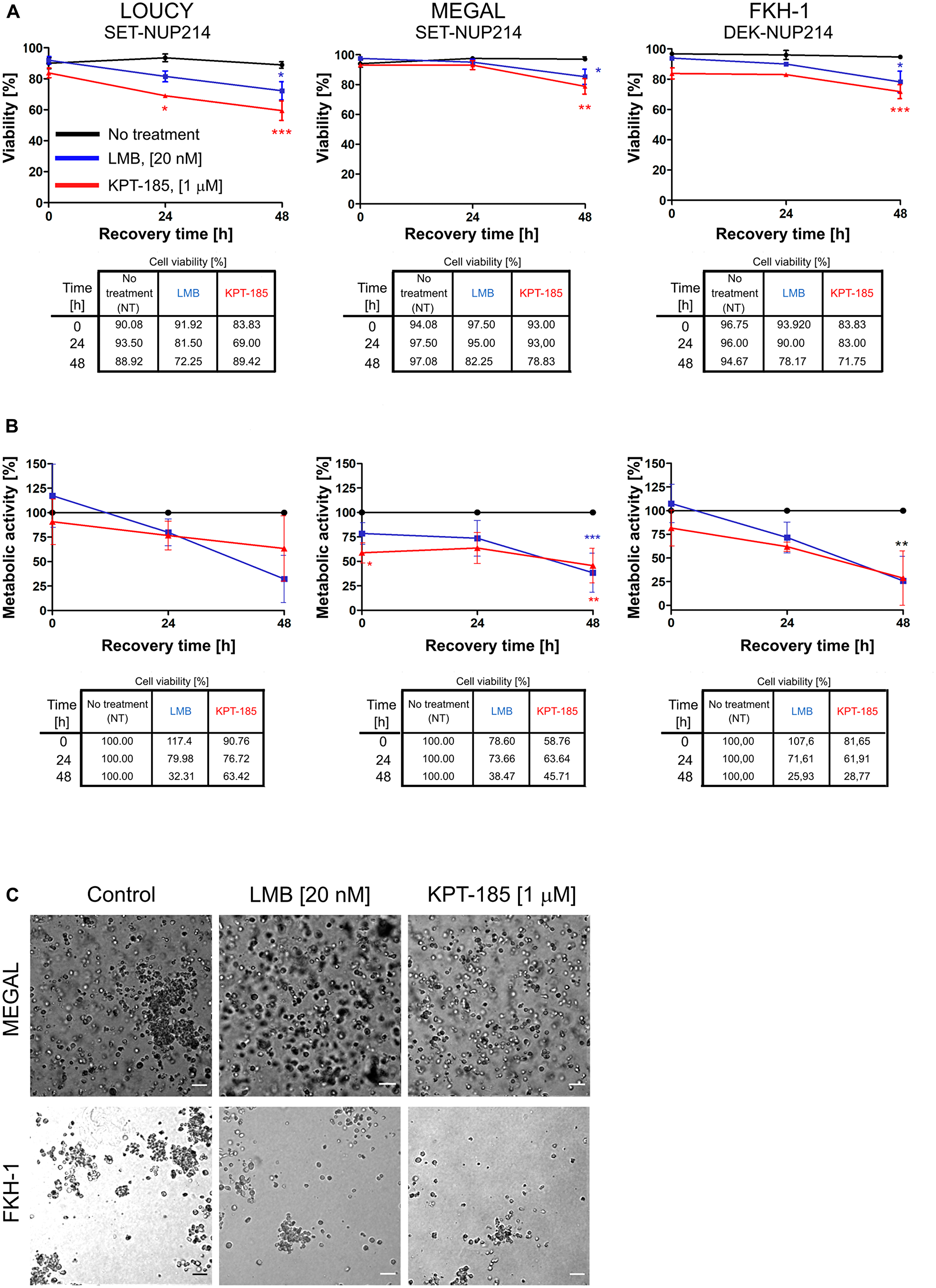 LMB and KPT-185 persistently affect cellular function.