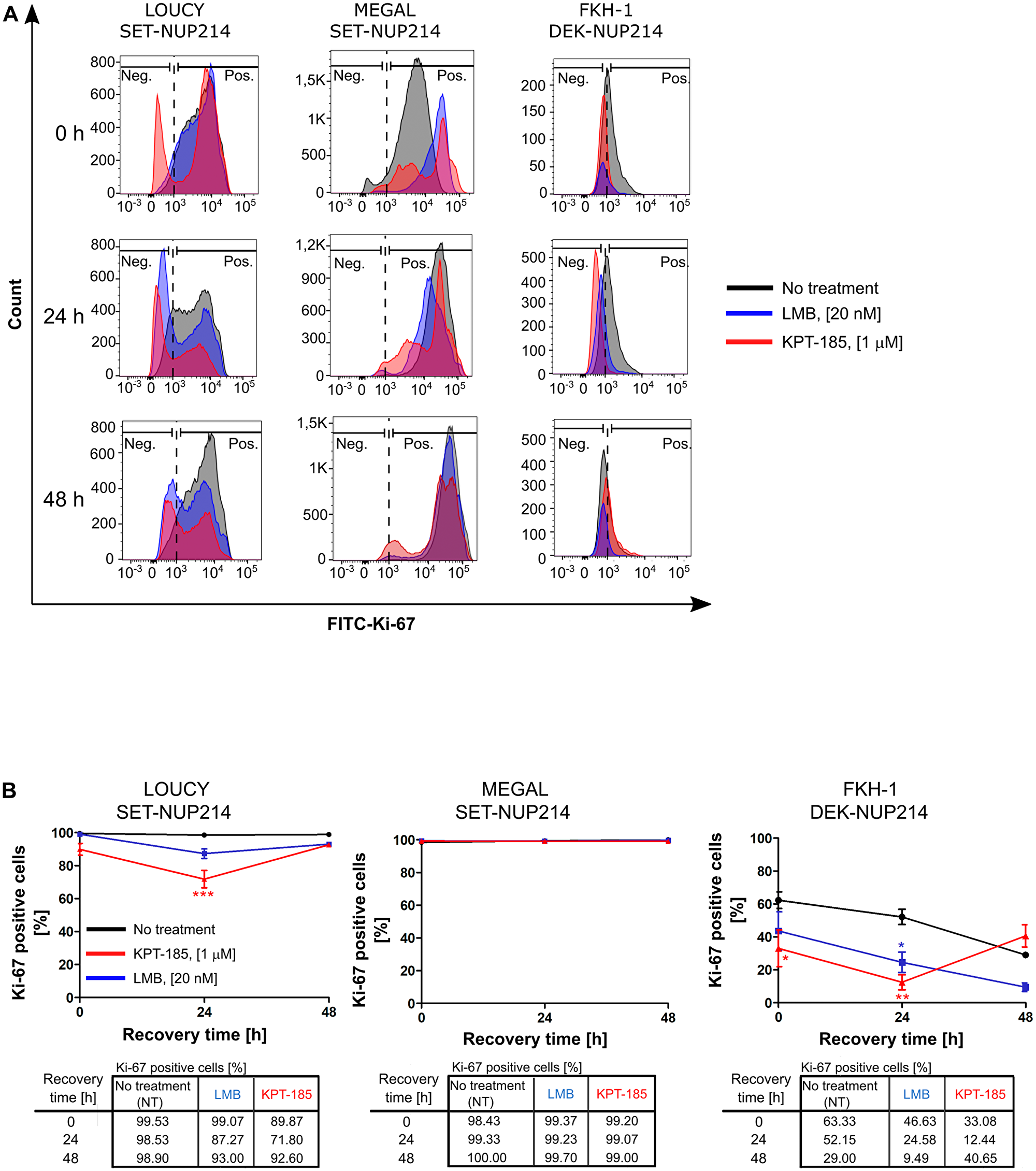 Distinct effects of CRM1 inhibition results on cell proliferation.